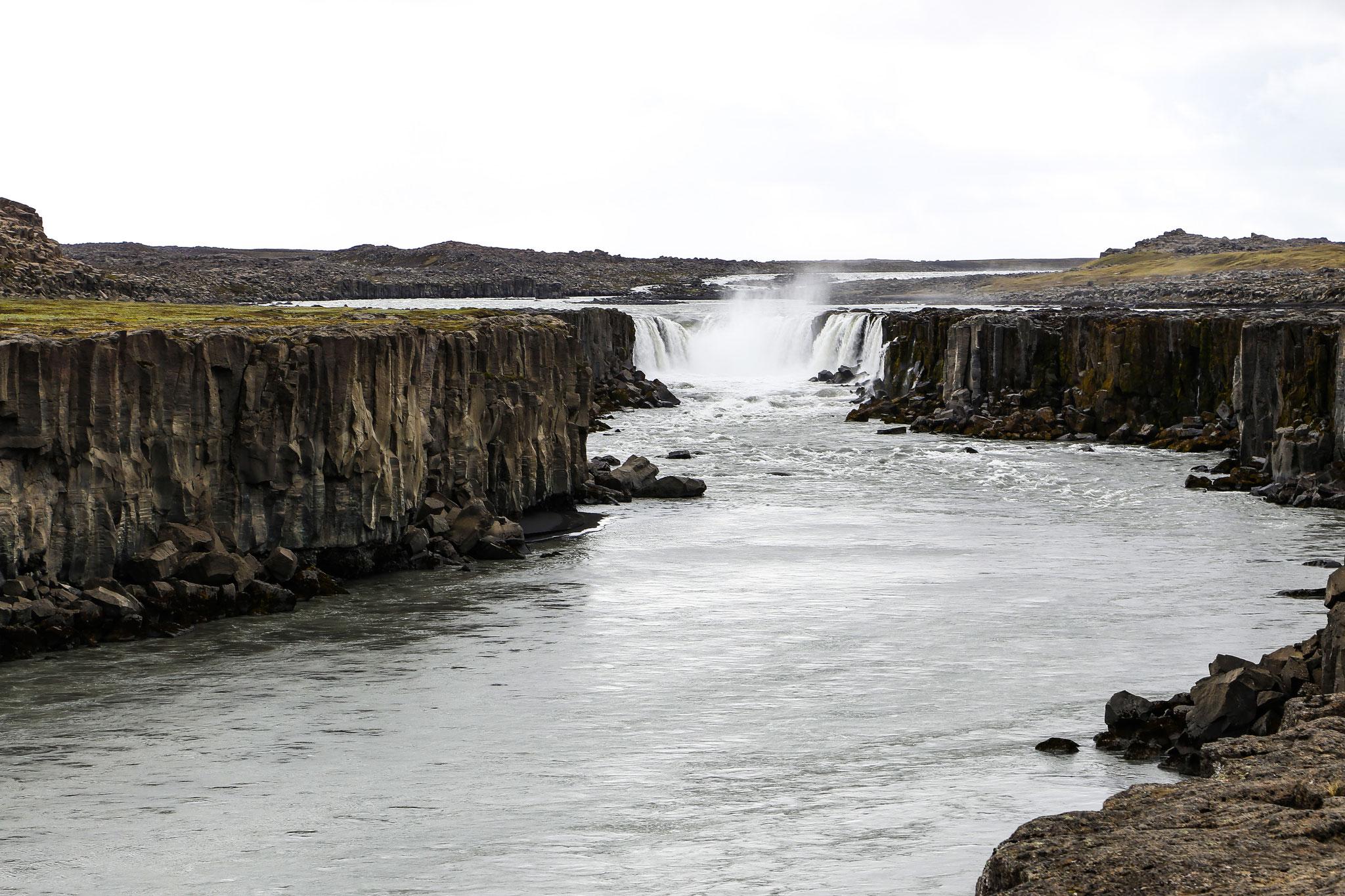 Dettifoss - mächtigster Wasserfall Europas