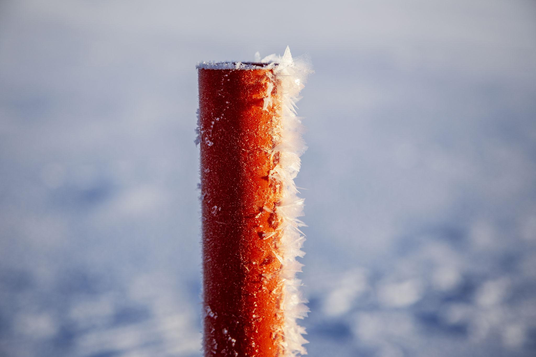 Schneefedern