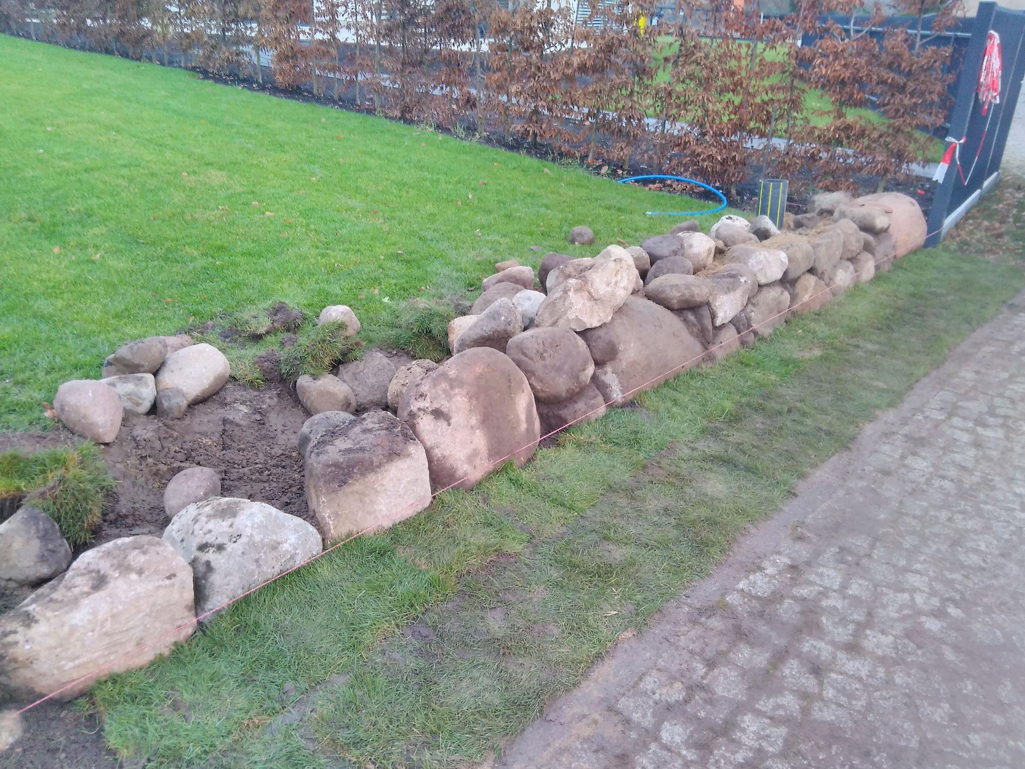 Mauerbau mit Feldsteinen zu einem Friesenwall
