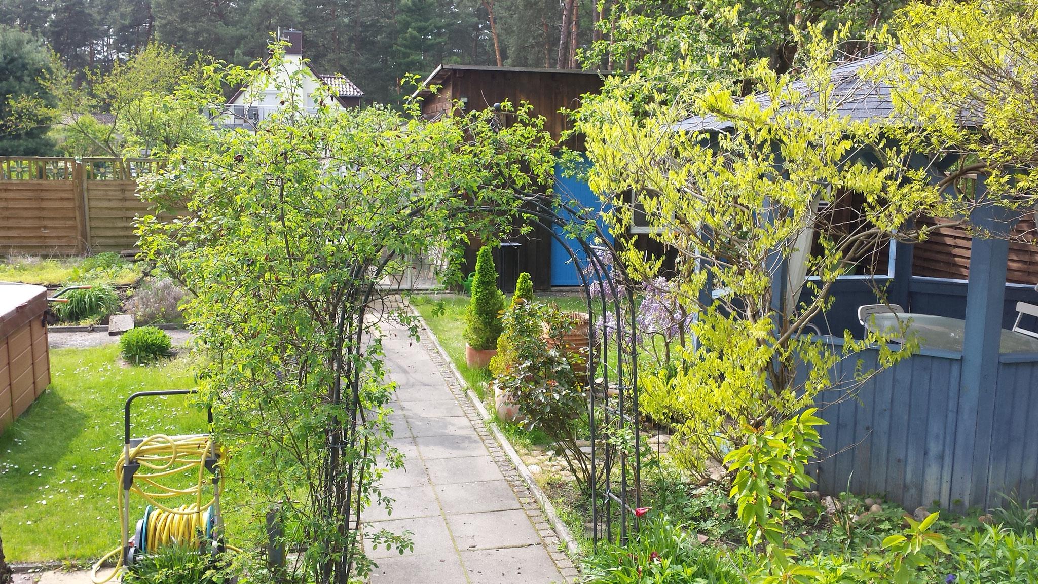 Kräuter aus dem vorherigen Garten zu erhalten und eine großflächige Rasenfläche entstehen zu lassen.