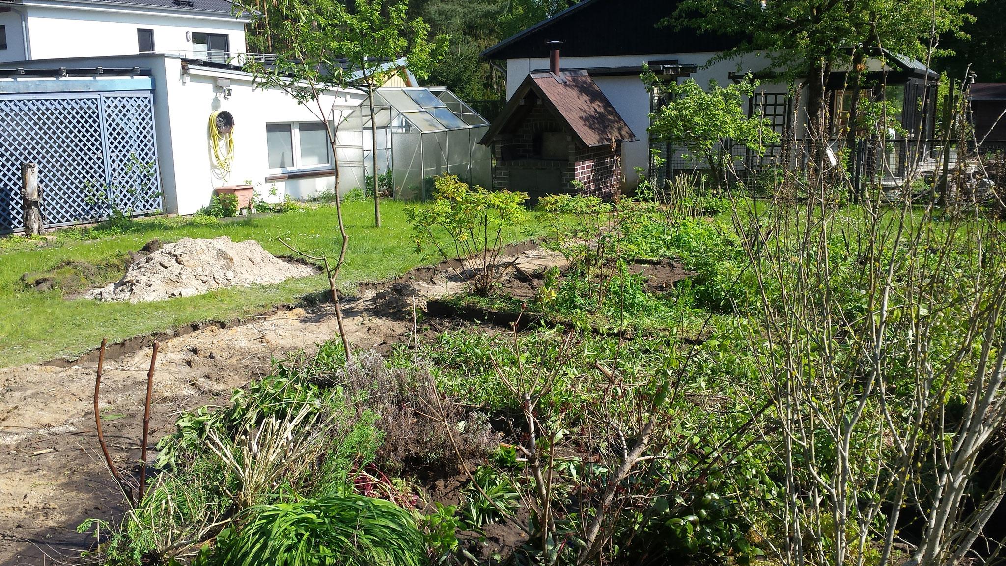 Des Weiteren spielte der Sichtschutz zu den Nachbarn und eine pflegeleichte Pflanzenergänzung eine Rolle.