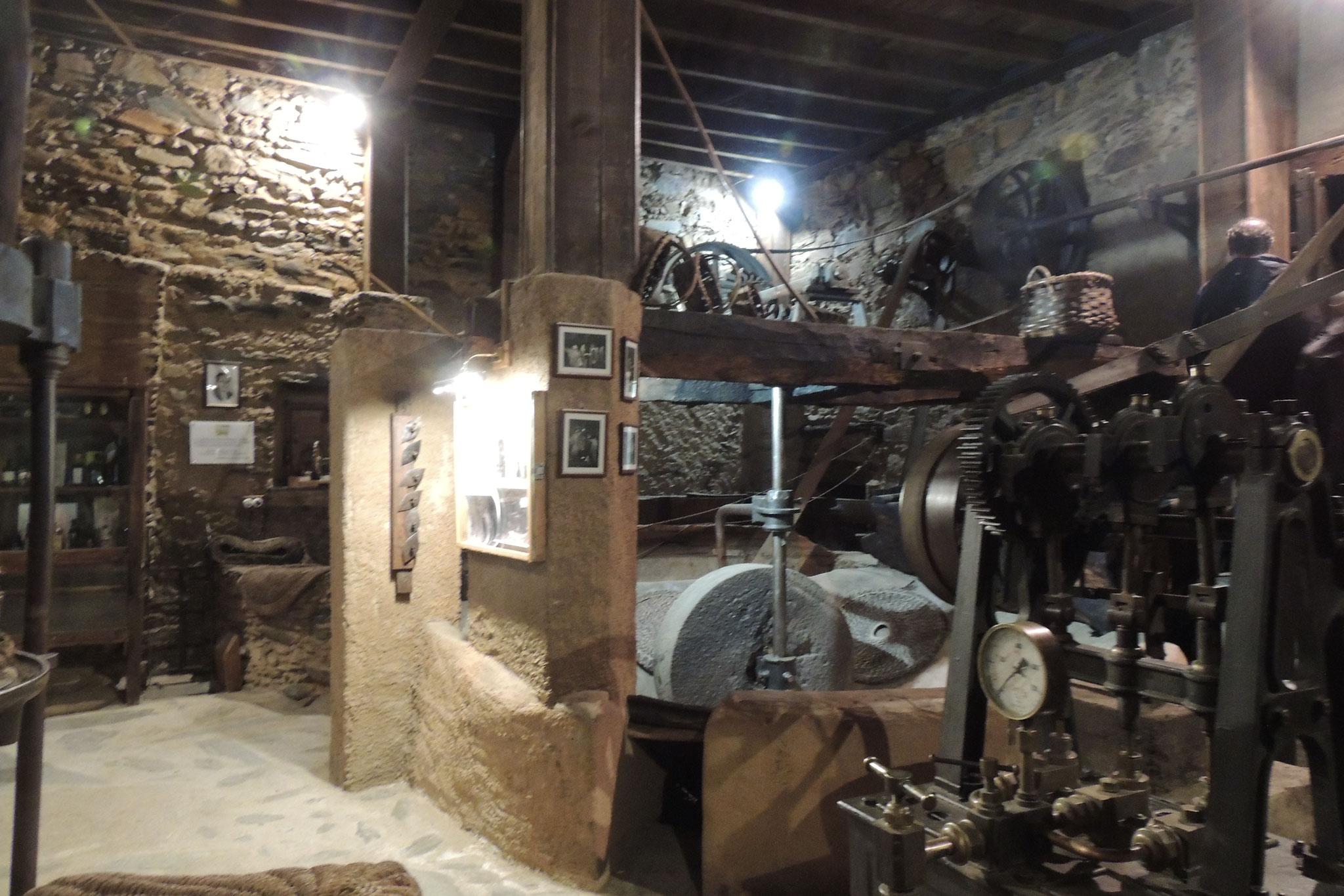 Museo del Molino del medio