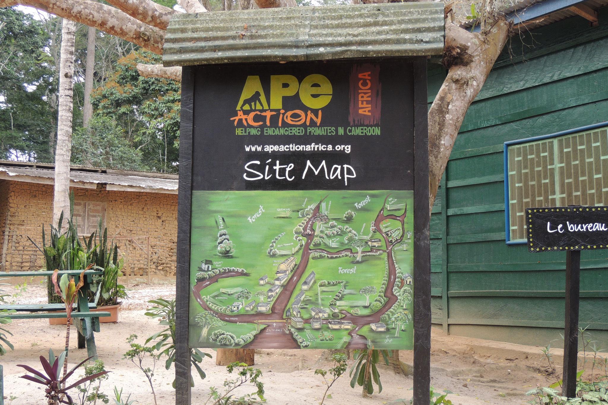Entrada al Ape Action