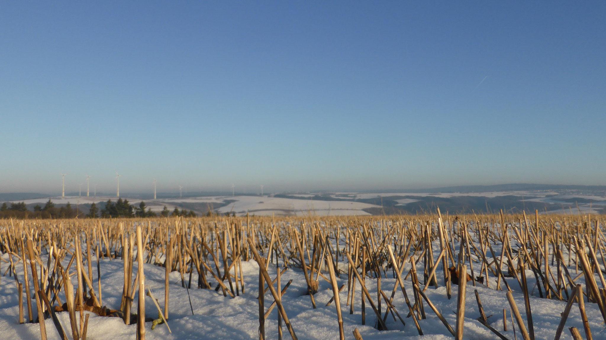 Winter Januar 2017