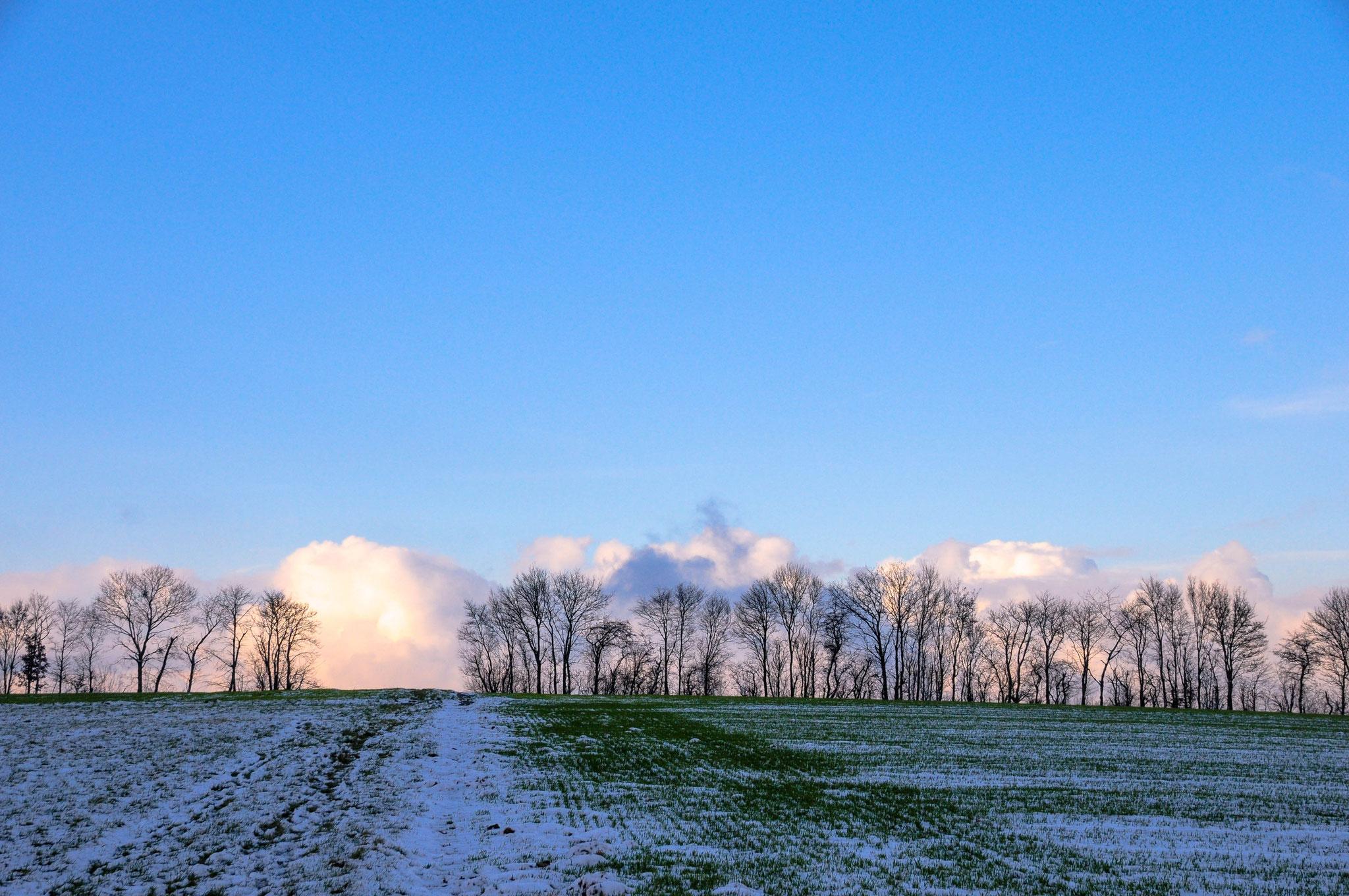 Winter, 01.12.2017