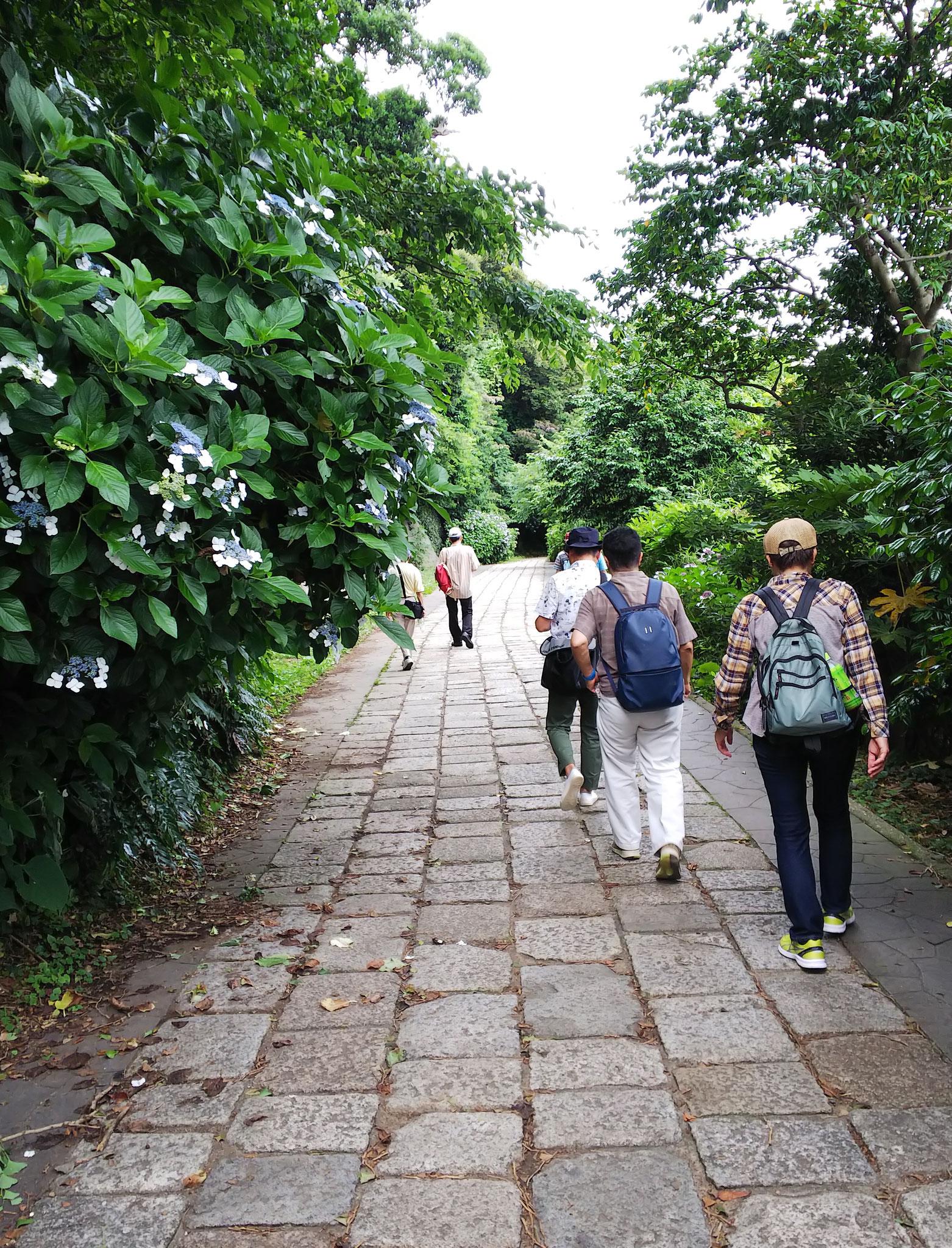 観音崎灯台下の遊歩道を歩きバス停に向かう