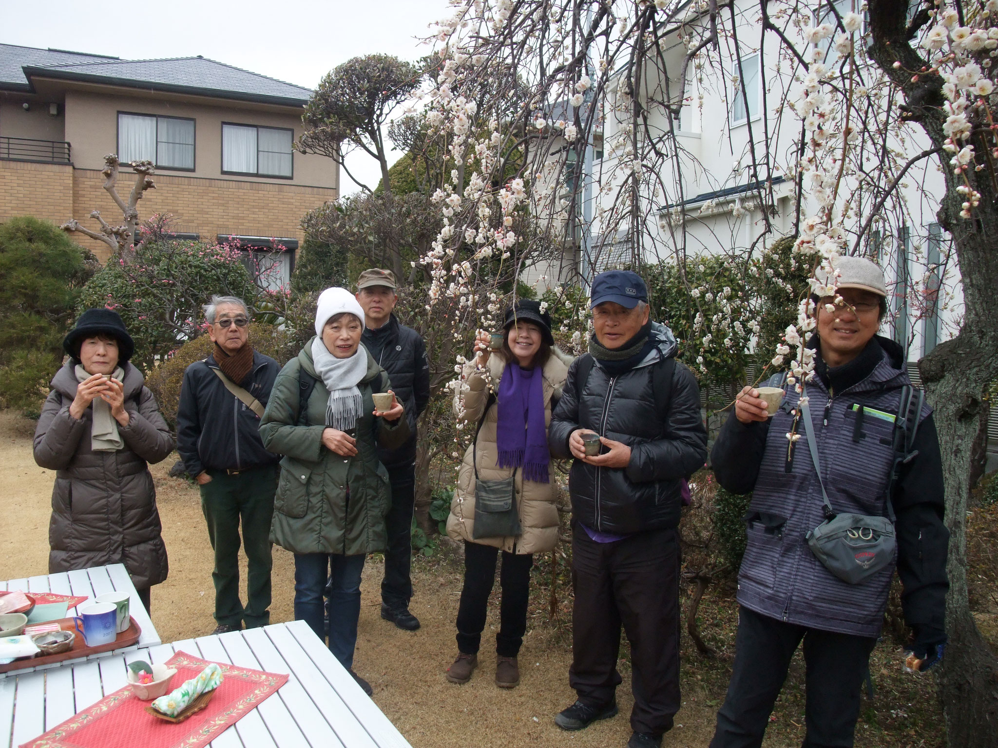 N氏邸にお邪魔して枝垂れ梅の庭で暖かい甘酒を頂く