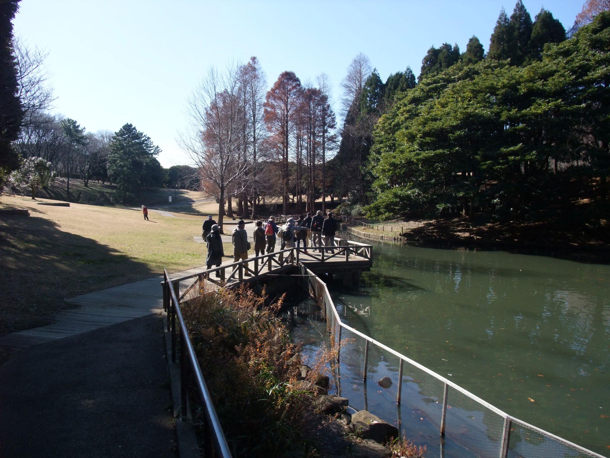 池の端を巡り公園を出る