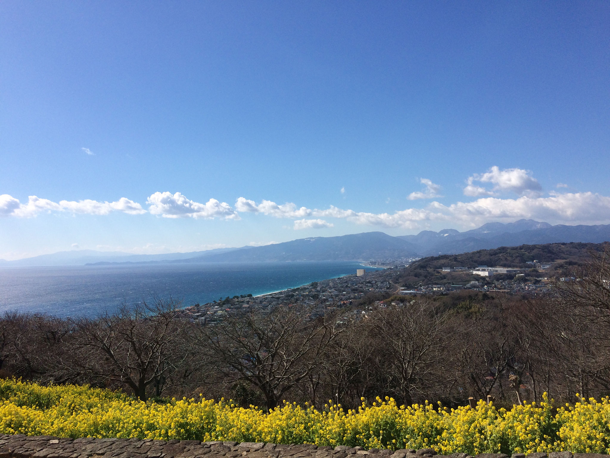 箱根、丹沢が手に取るような近さに感じられますね~