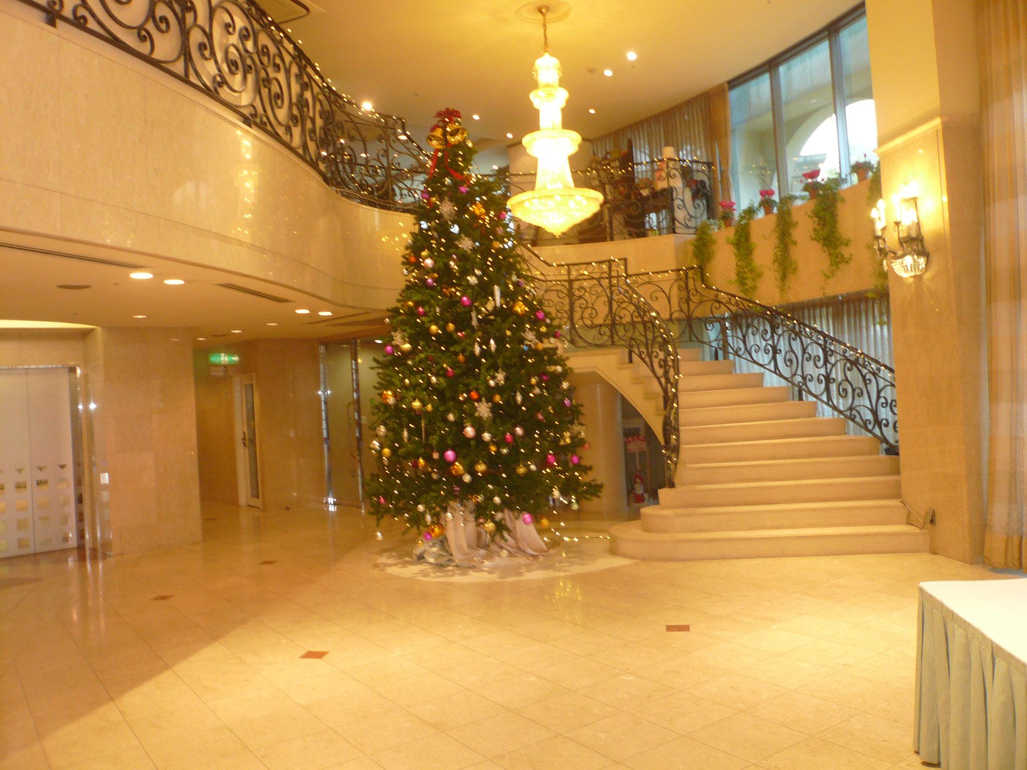 クリスマスツリーが迎えてくれる