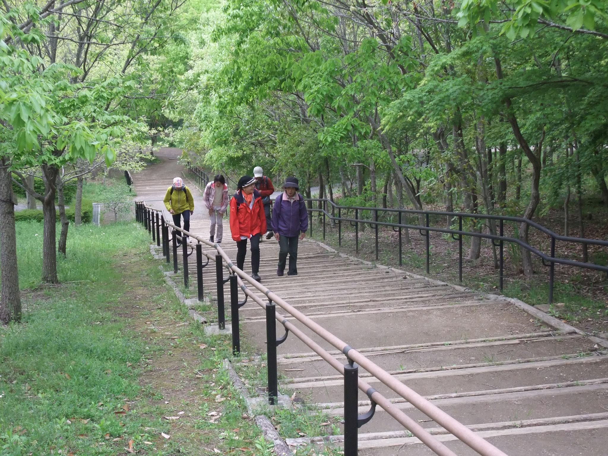 里山公園の上り階段