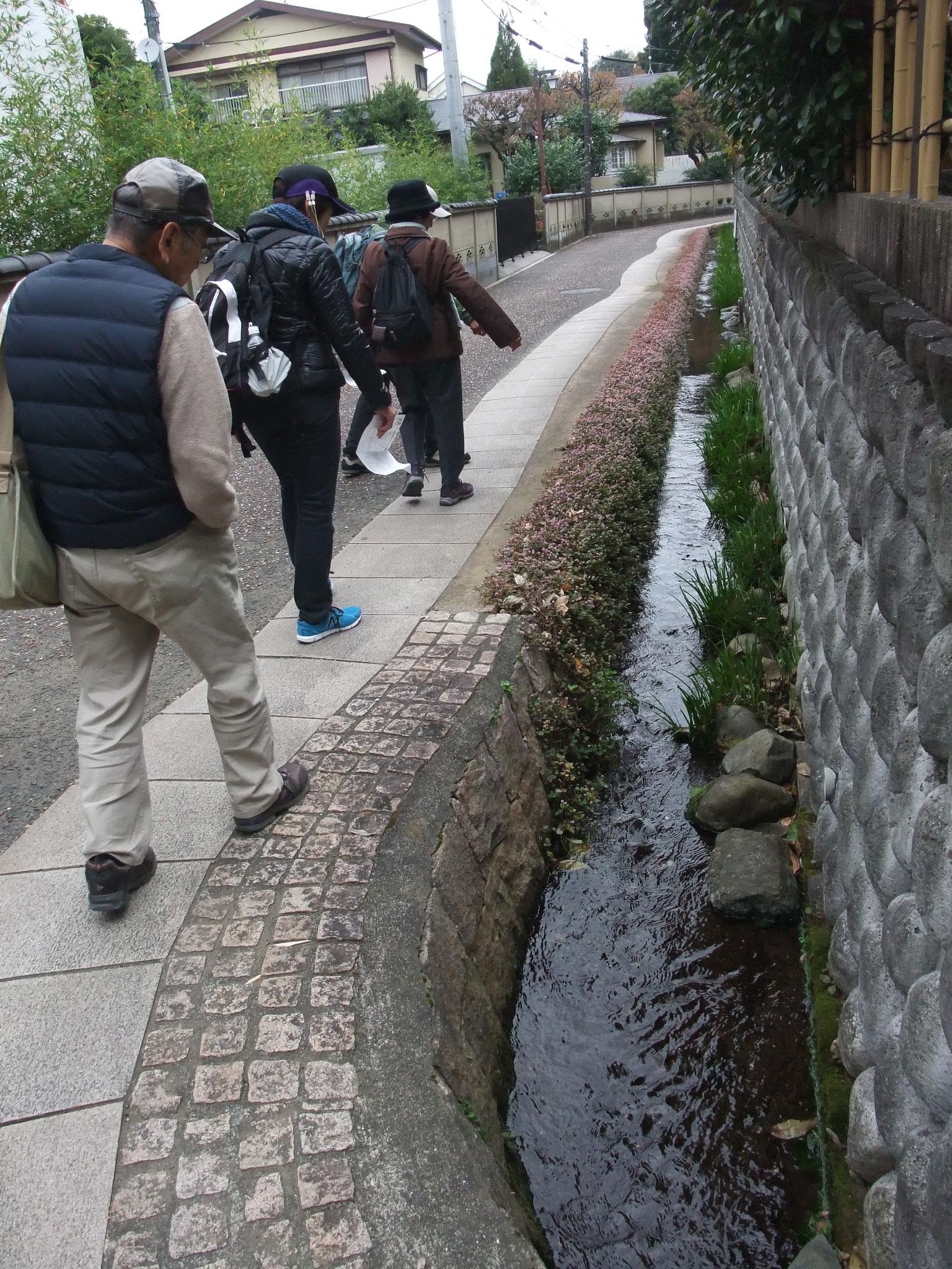 鈴鹿・長宿地区の湧水の流れを散策