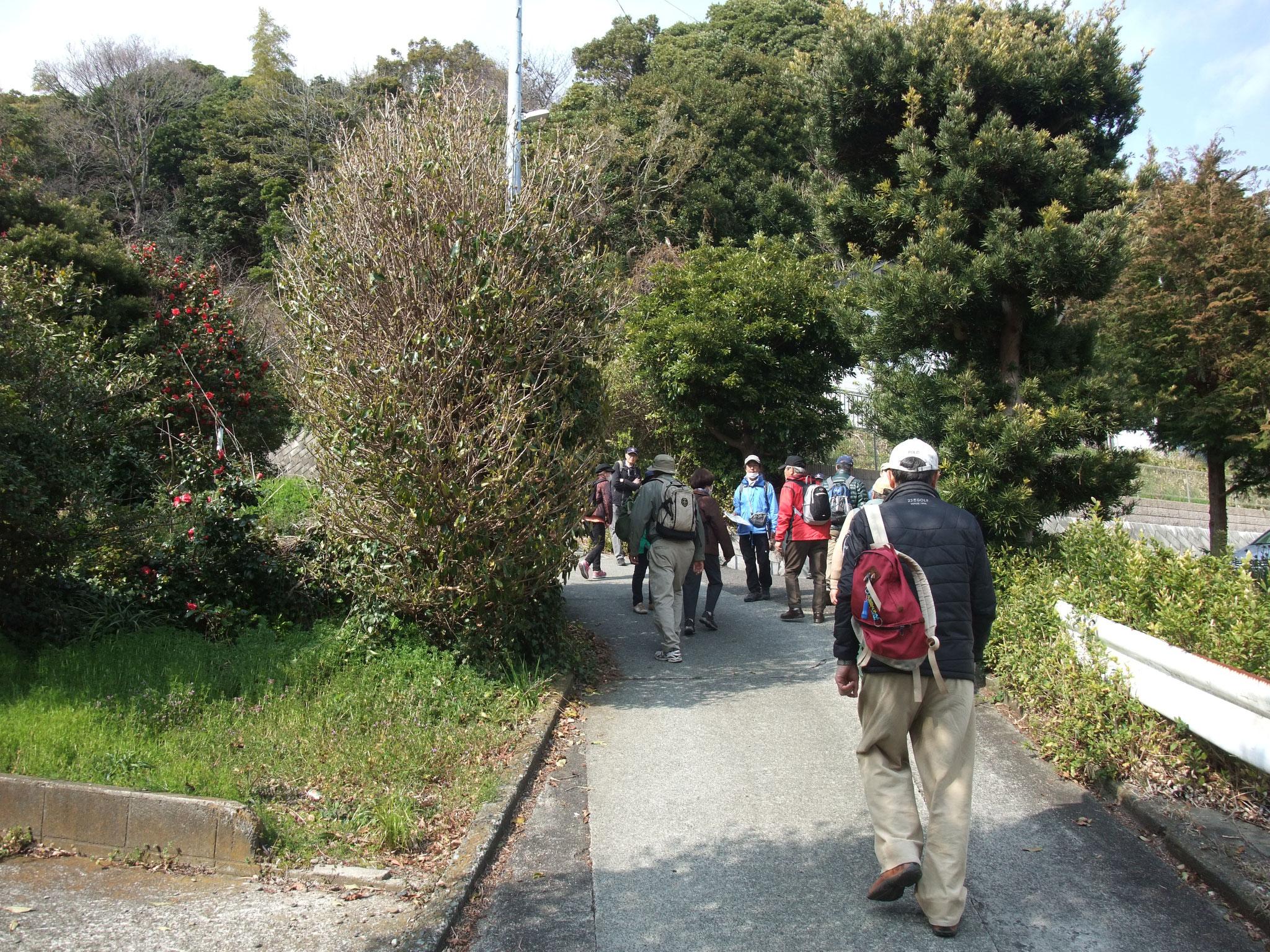 駅東側の急斜面。付近に大隈重信、森村市左衛門別荘跡