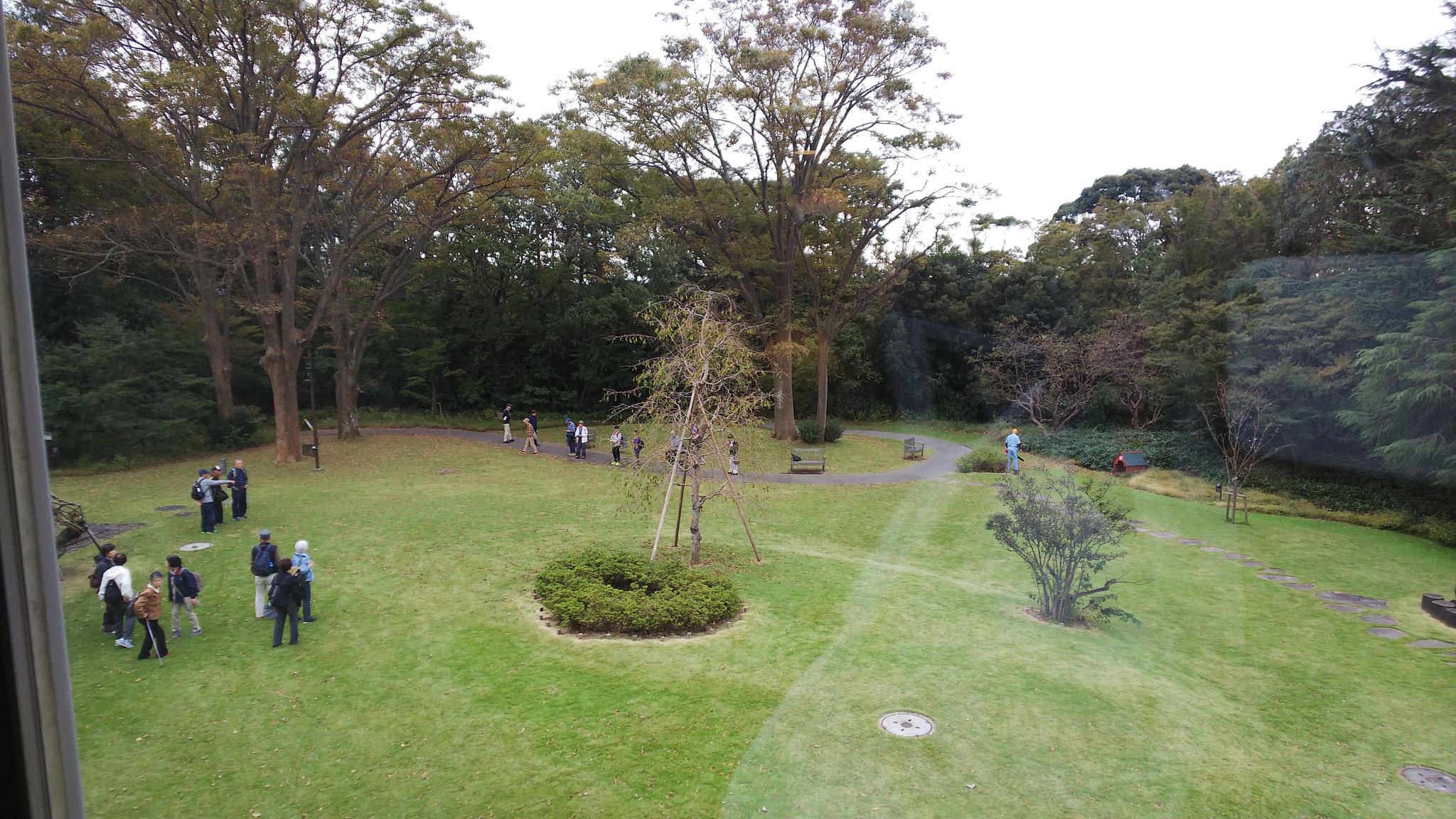 別邸2階から芝生庭園を見る