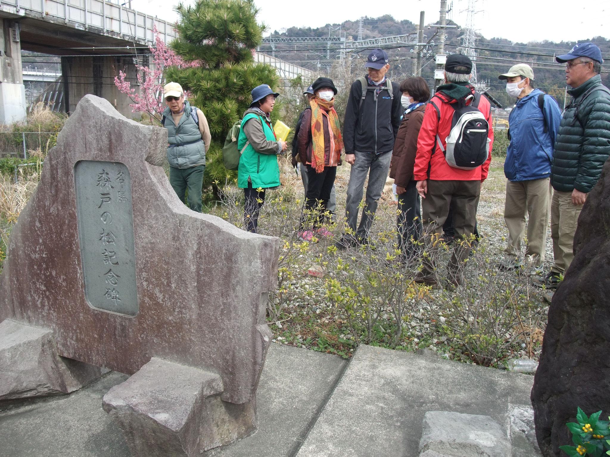 昭和20年頃雷で倒れた松の大木を記念