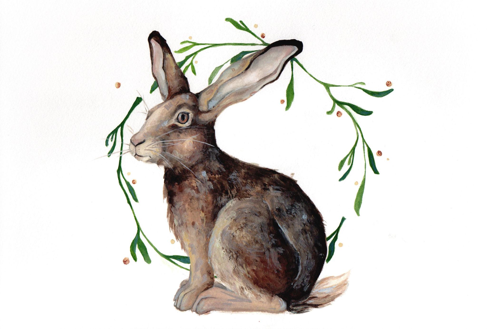 European hare (Lepus europaeus) I Watercolor I 21 x 29,7cm