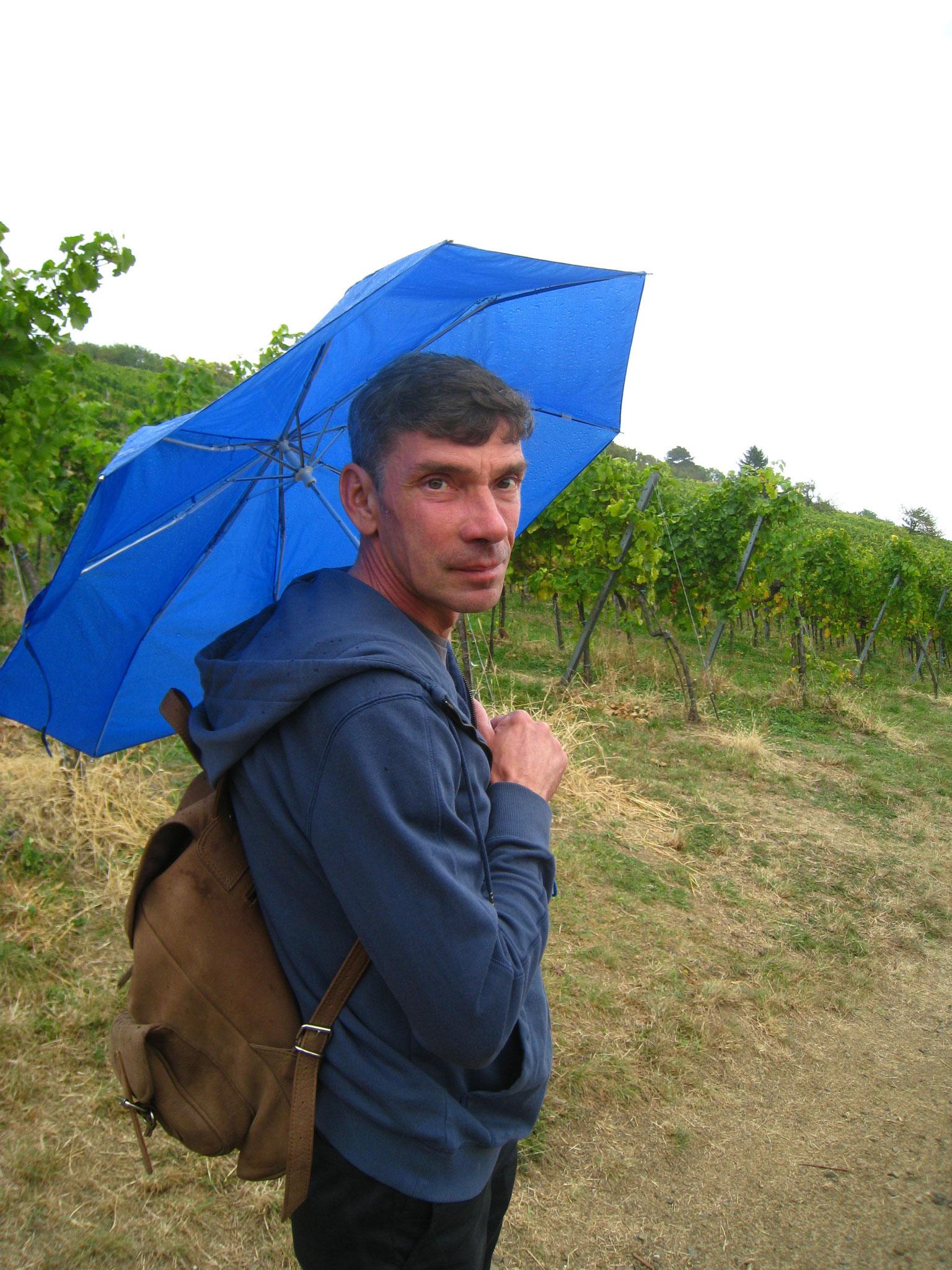 Wandern bei Regen in Wiens Weinbergen