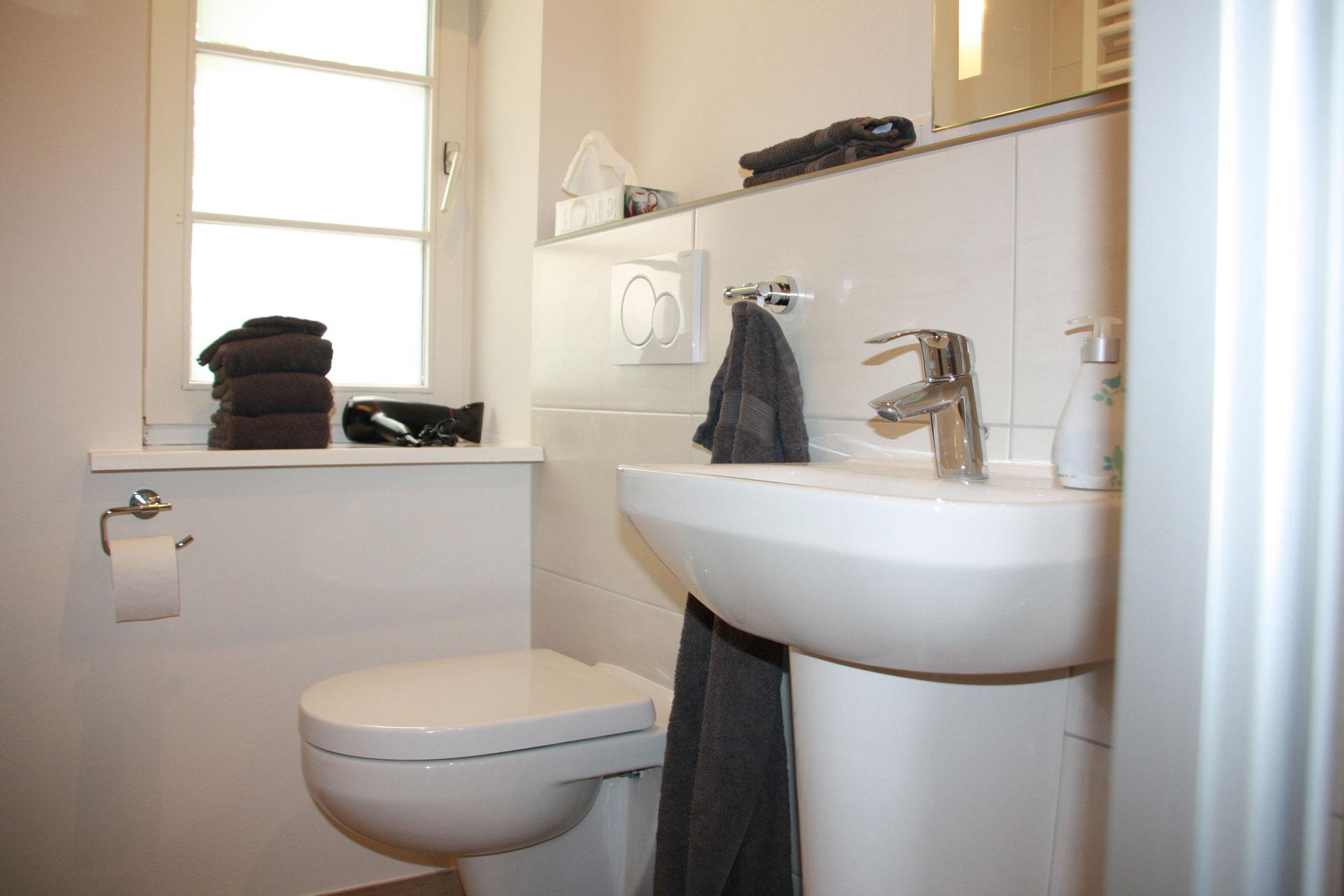 ... mit WC, Waschbecken und