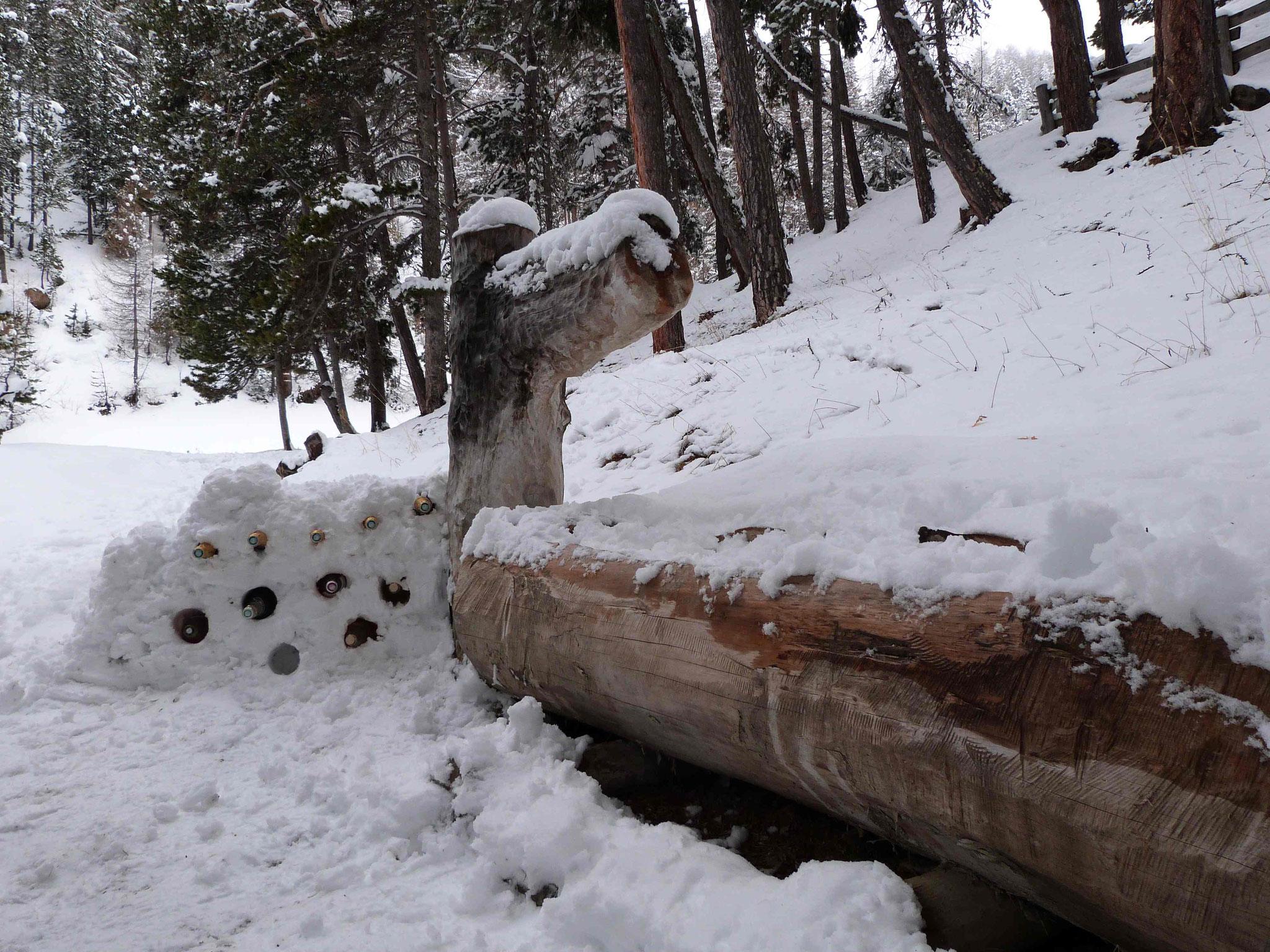 mars 2017 Vallée de la Clarée Maison forestière de Névache. Mise au frais des remontants après l'effort...