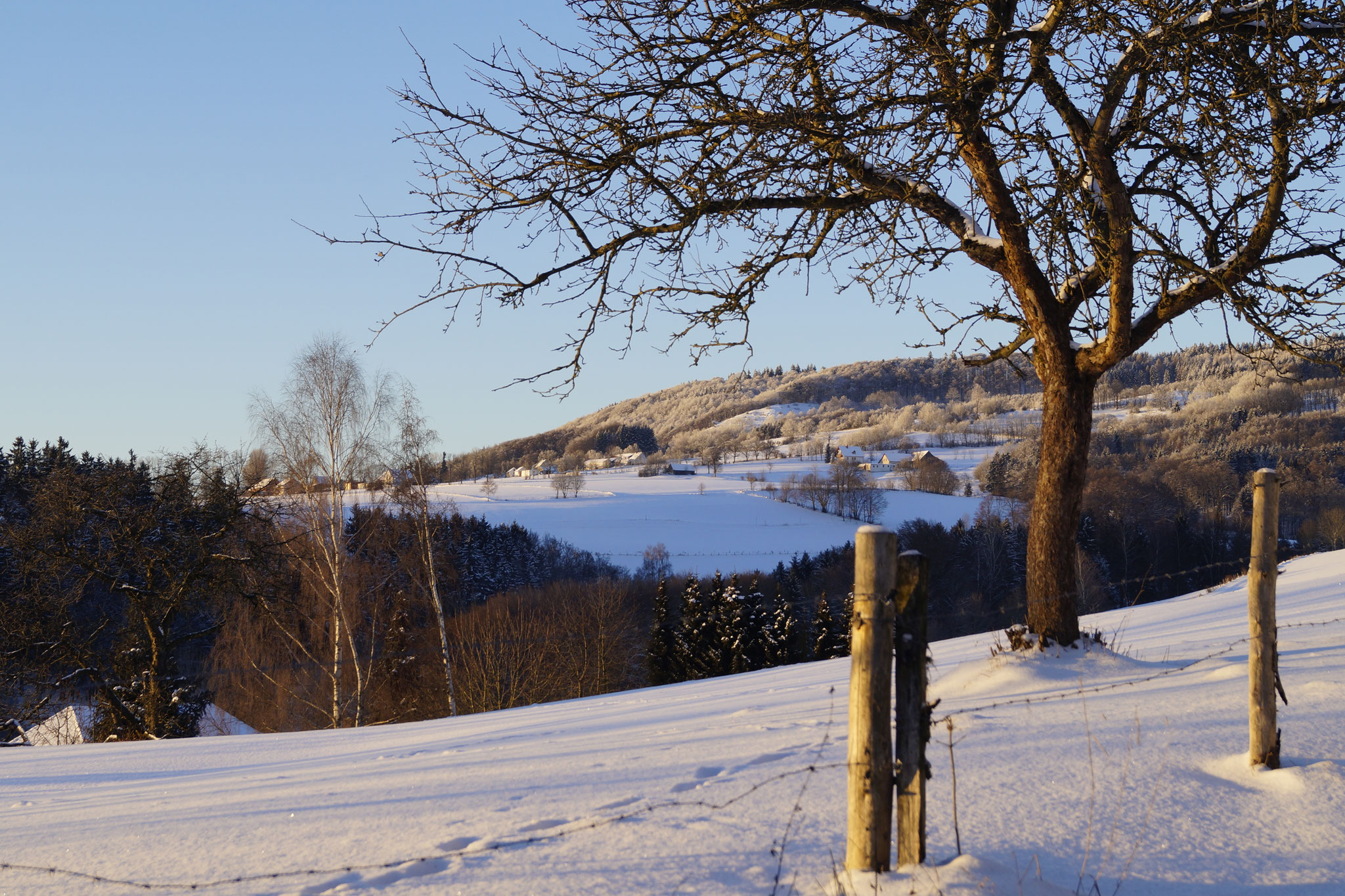 Winter in der Rhön - bei Sandberg