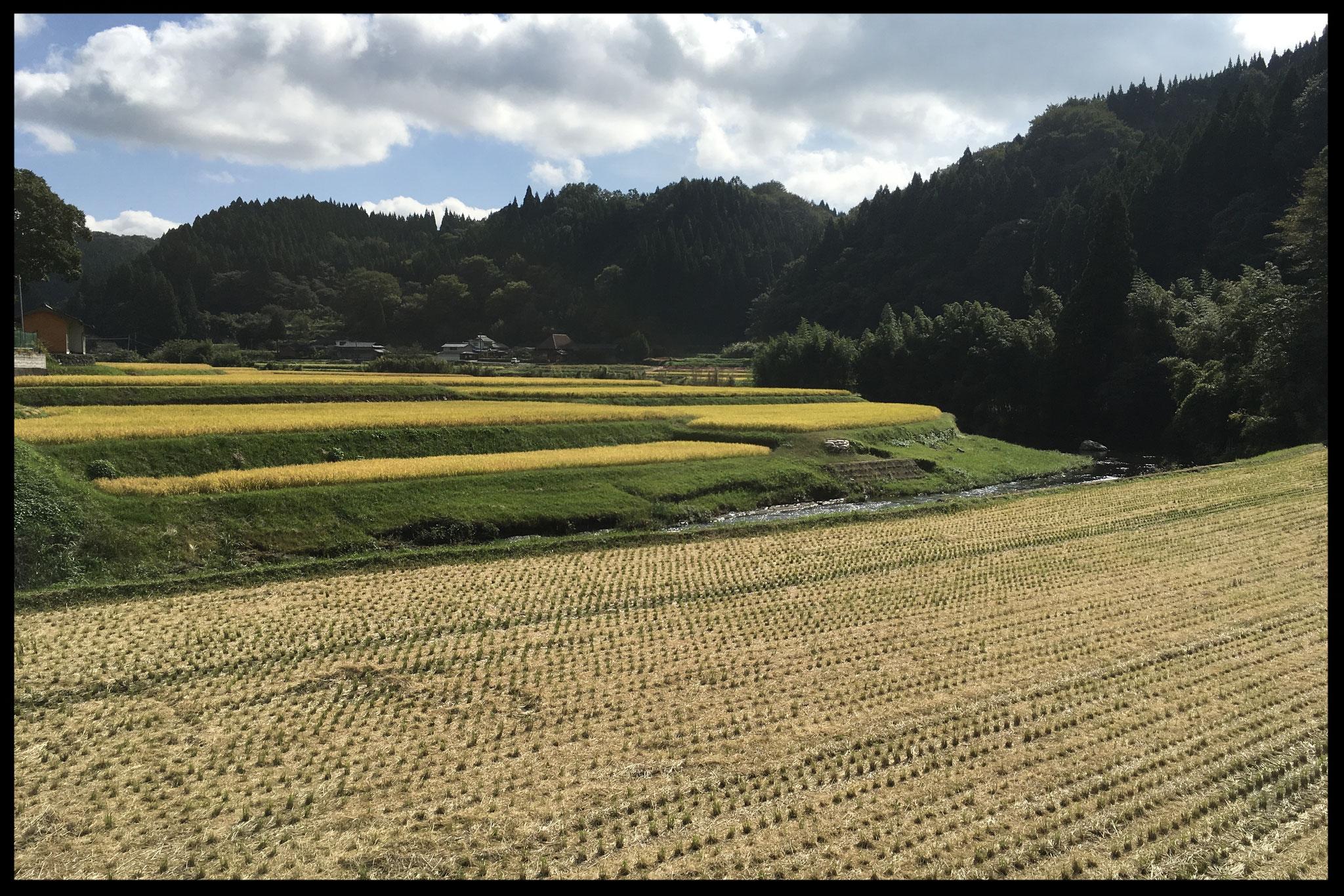 素晴らしい田園の眺めにうっとり