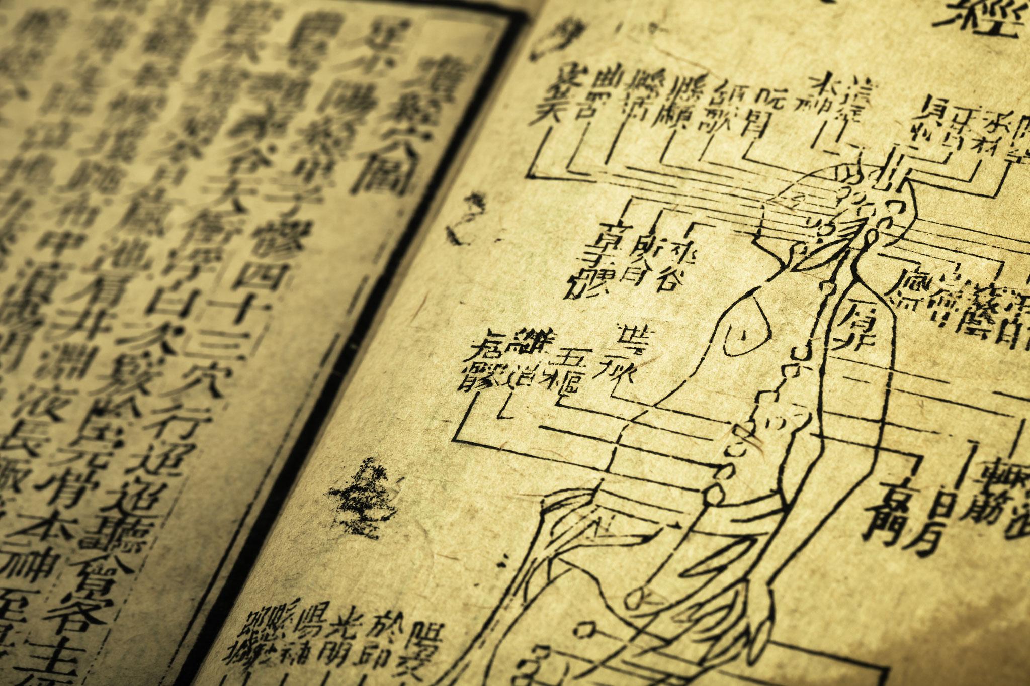 Traditonelle Chinesische Medizin (TCM)