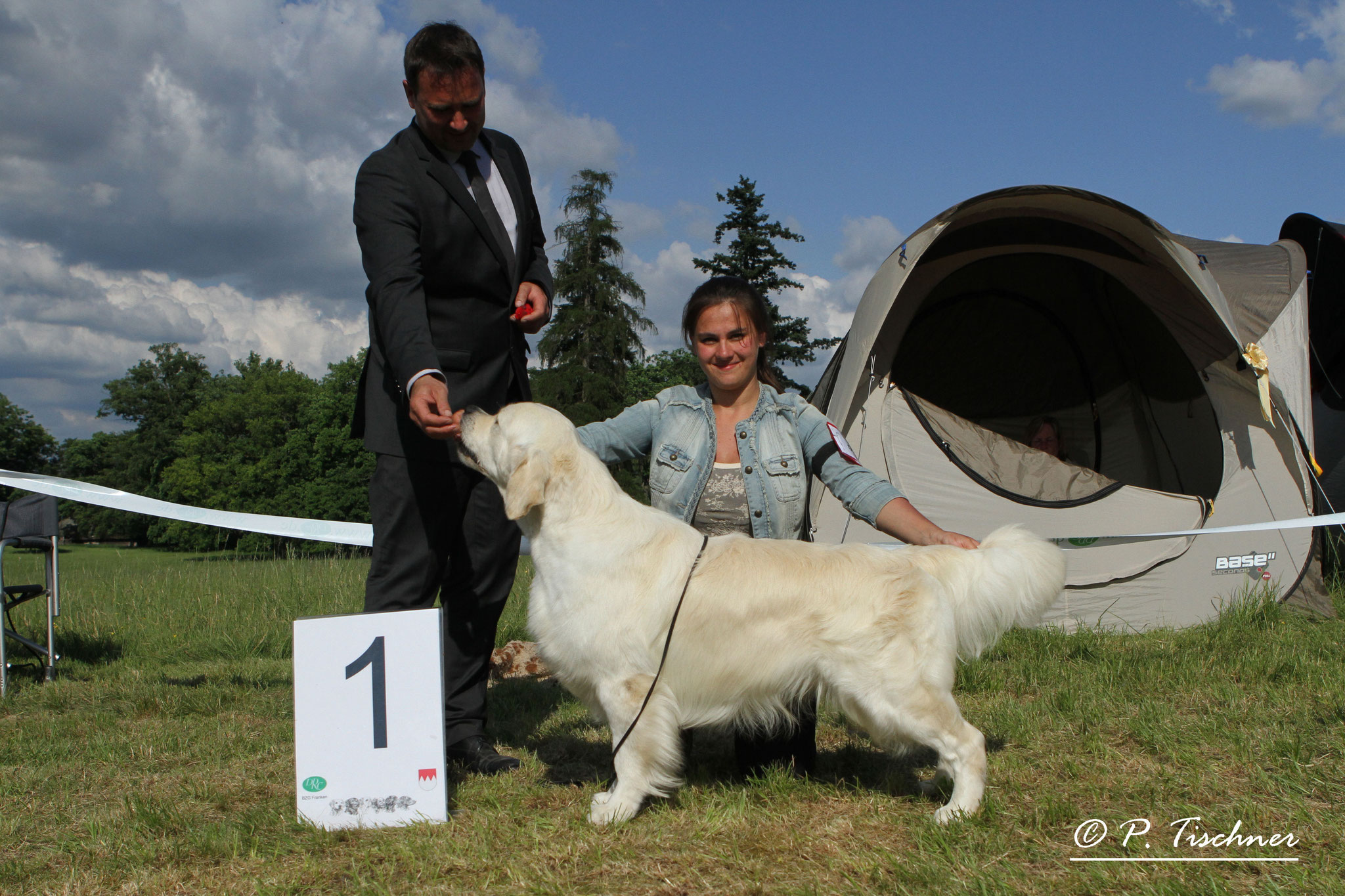 Jackson BIS in Pommersfelden, May 2014, Judge: Mr Santiago Gadea Castro