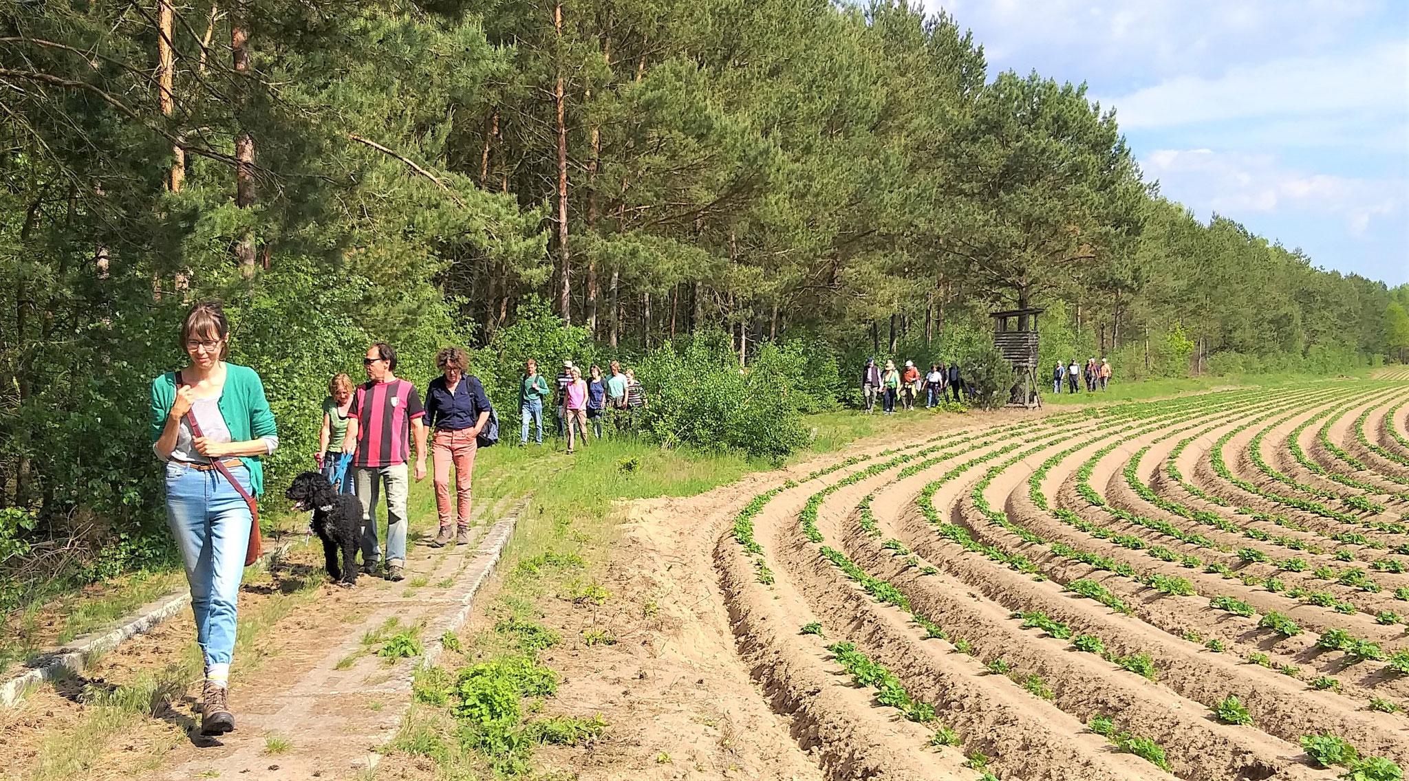 Grünes Band-Wanderung am 18.05.2019 rund um Dahrendorf