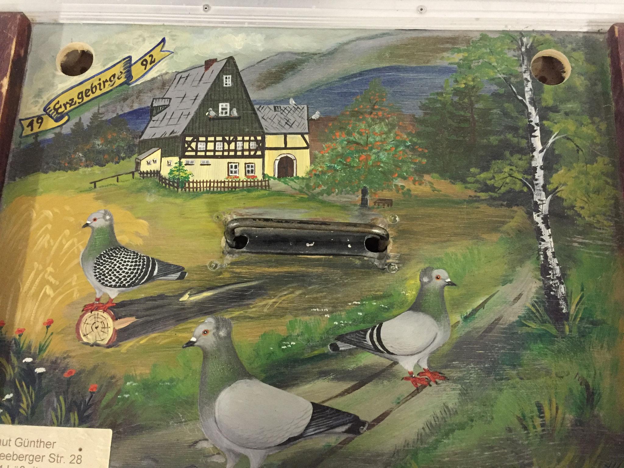 Tauben Transportkiste von unserem Zuchtfreund H. Günther