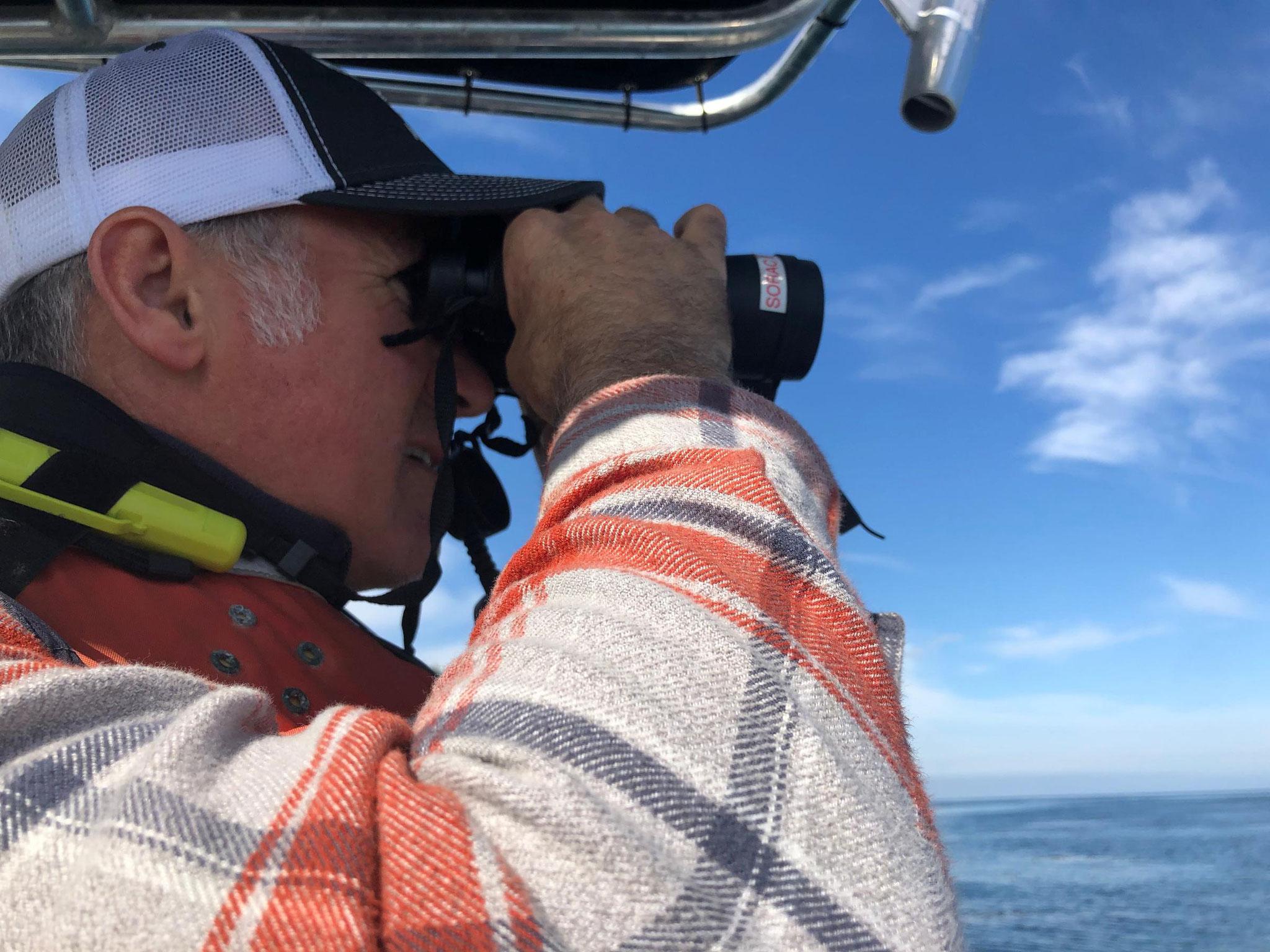 ラッコたちをリリースした後、カール・メイヤーがラッコを探して海上を探している