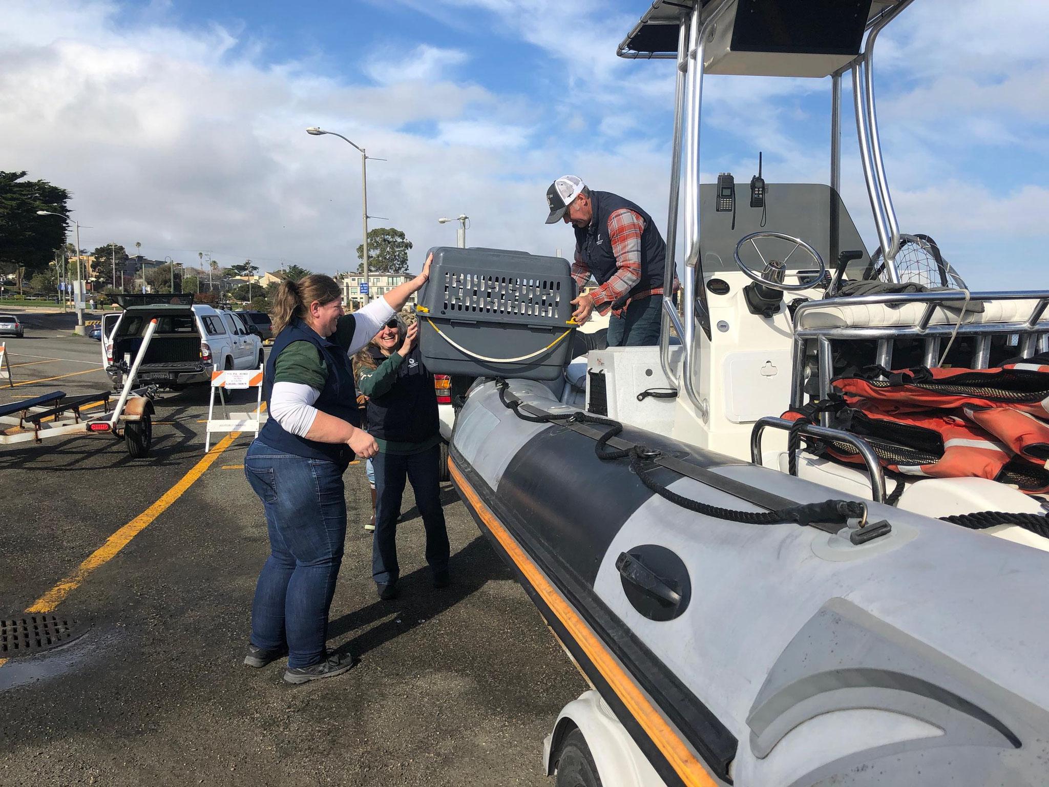 左から、カーラ・フィールド博士、ミシェル・ステッドラー、カール・メイヤーがラッコたちをボートに乗せている