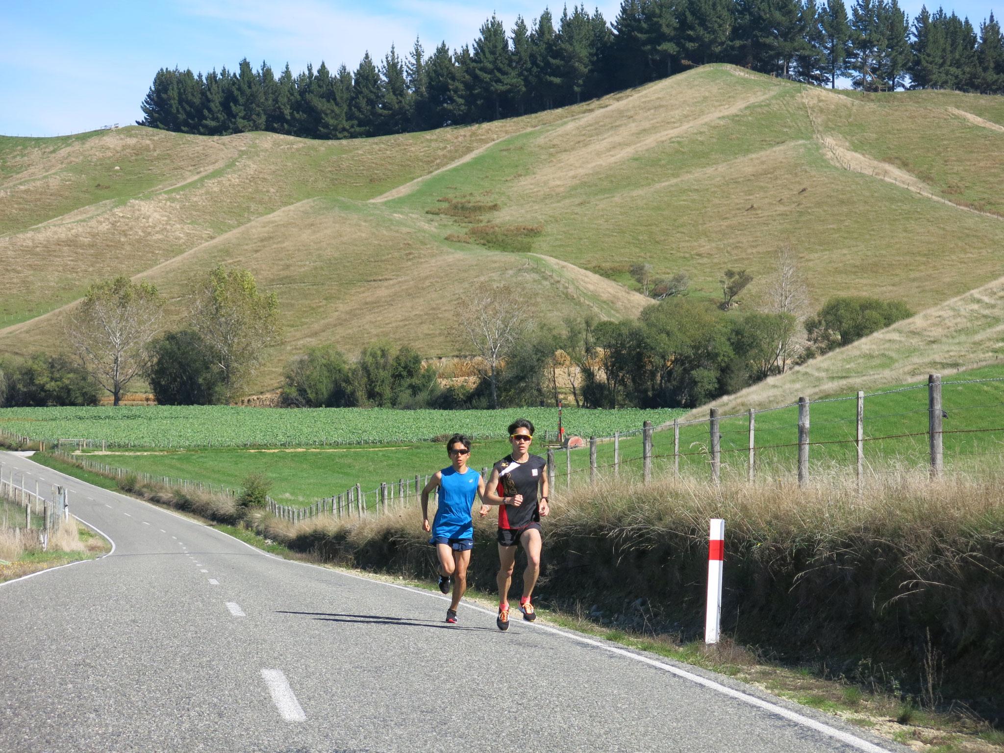 Upper Moutere / アップダウンのある40 km~50kmの長距離走コース