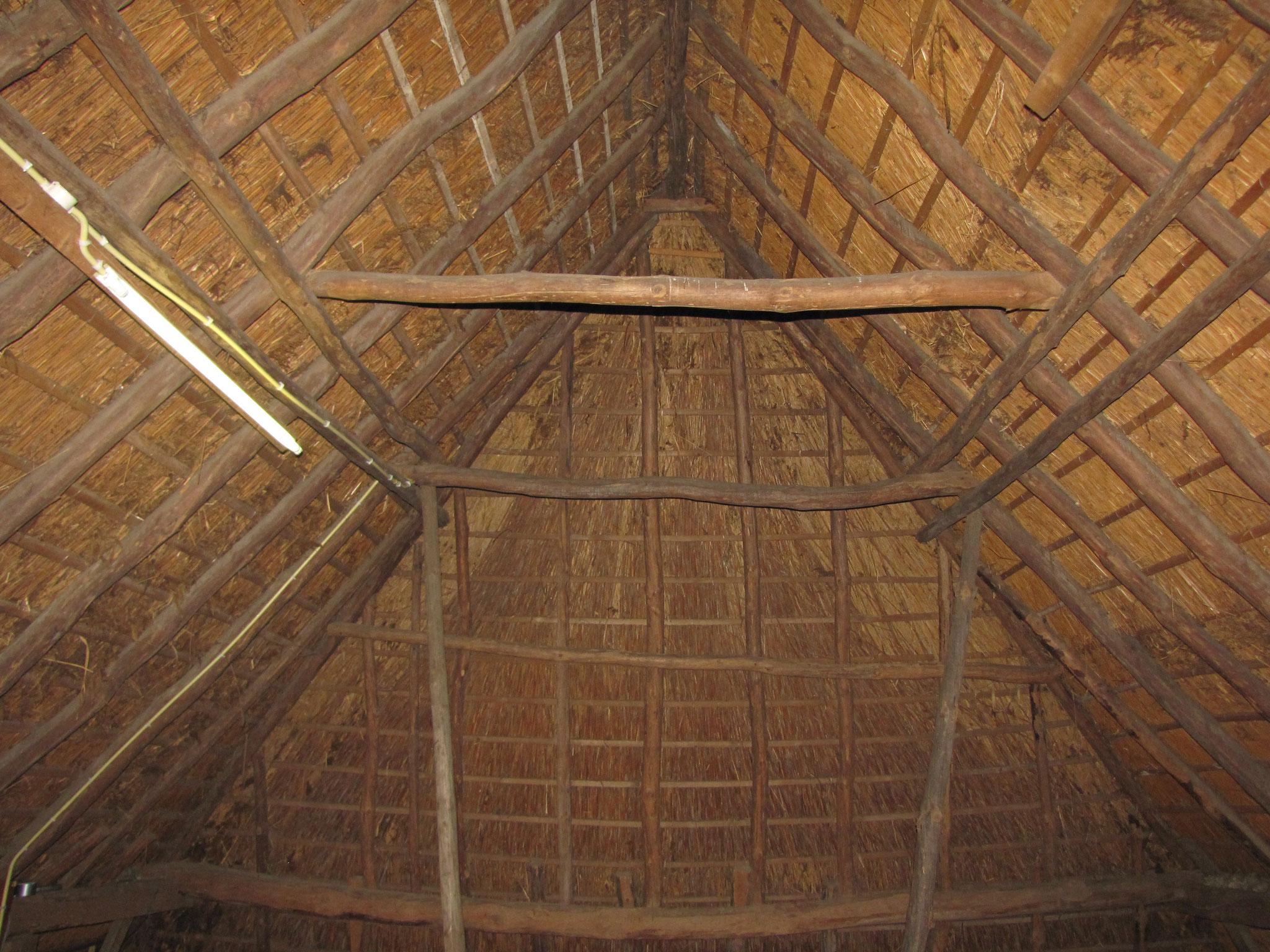 Eenvoudige rondhouten kapconstructie boven het achterhuis: representatief voor de Brabantse hallenhuisboerderijen.