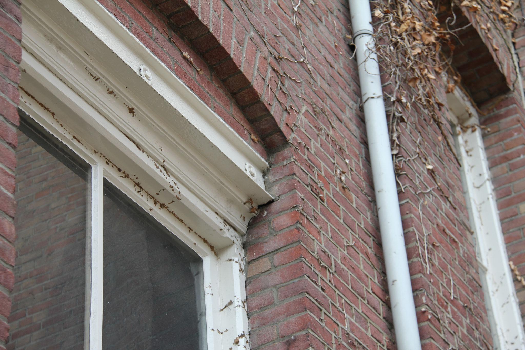 Detail van de rijk uitgevoerde vensterpartijen.