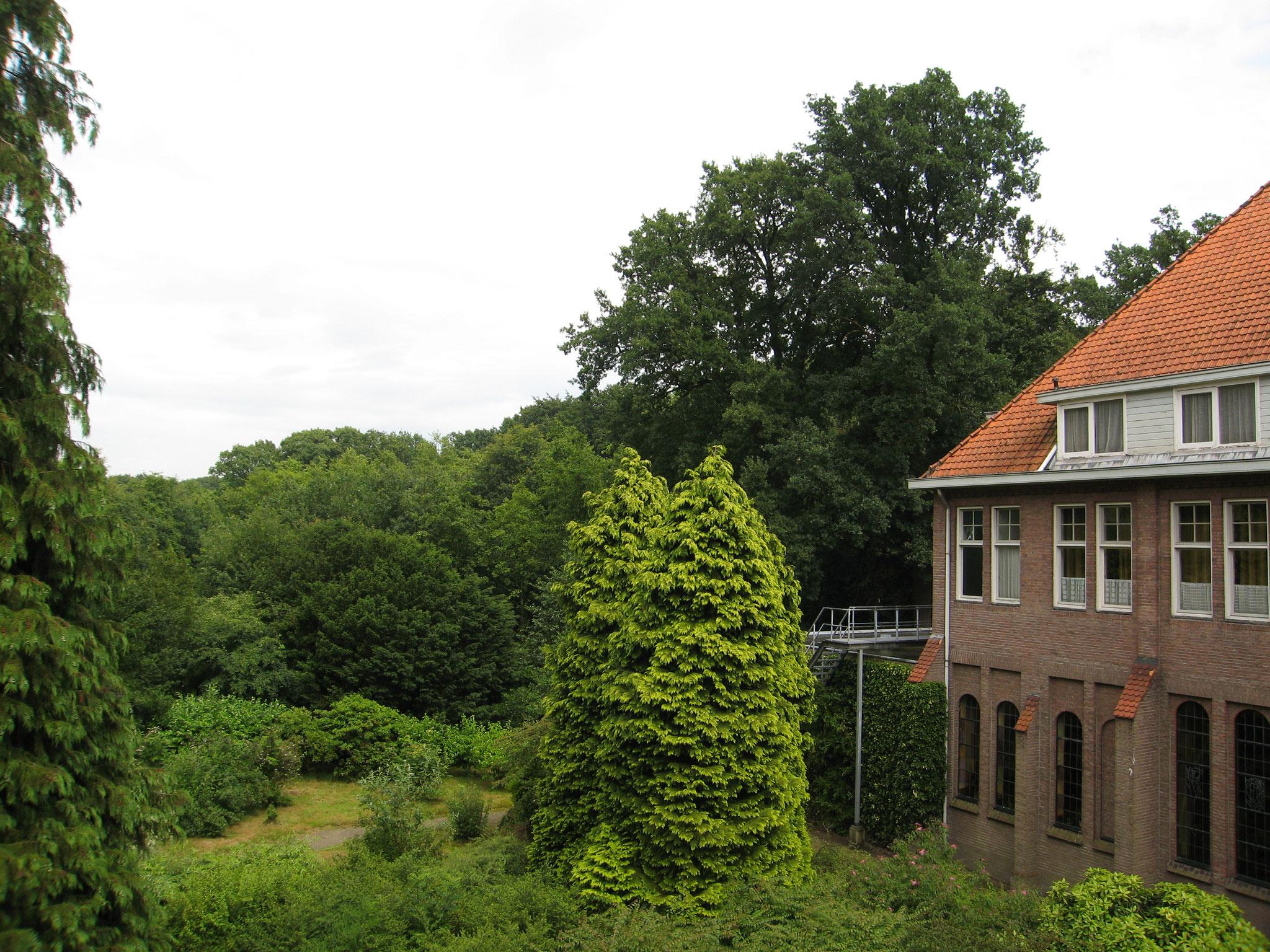Zicht op het verwilderde park, met rechts de kapelvleugel uit 1919, in 1929 opgehoogd.