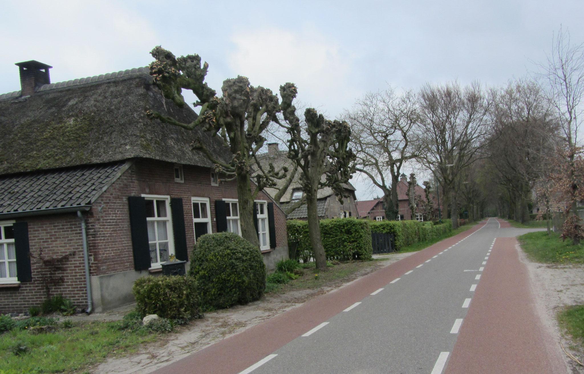 Straatbeeld Donzel, gebiedstype agrarisch cluster
