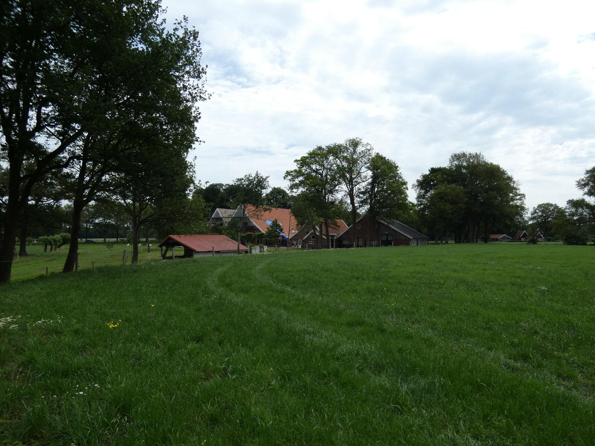 Erve Elkeman, gezien over de kamp op nieuw landgoed Hof van Twekkelo