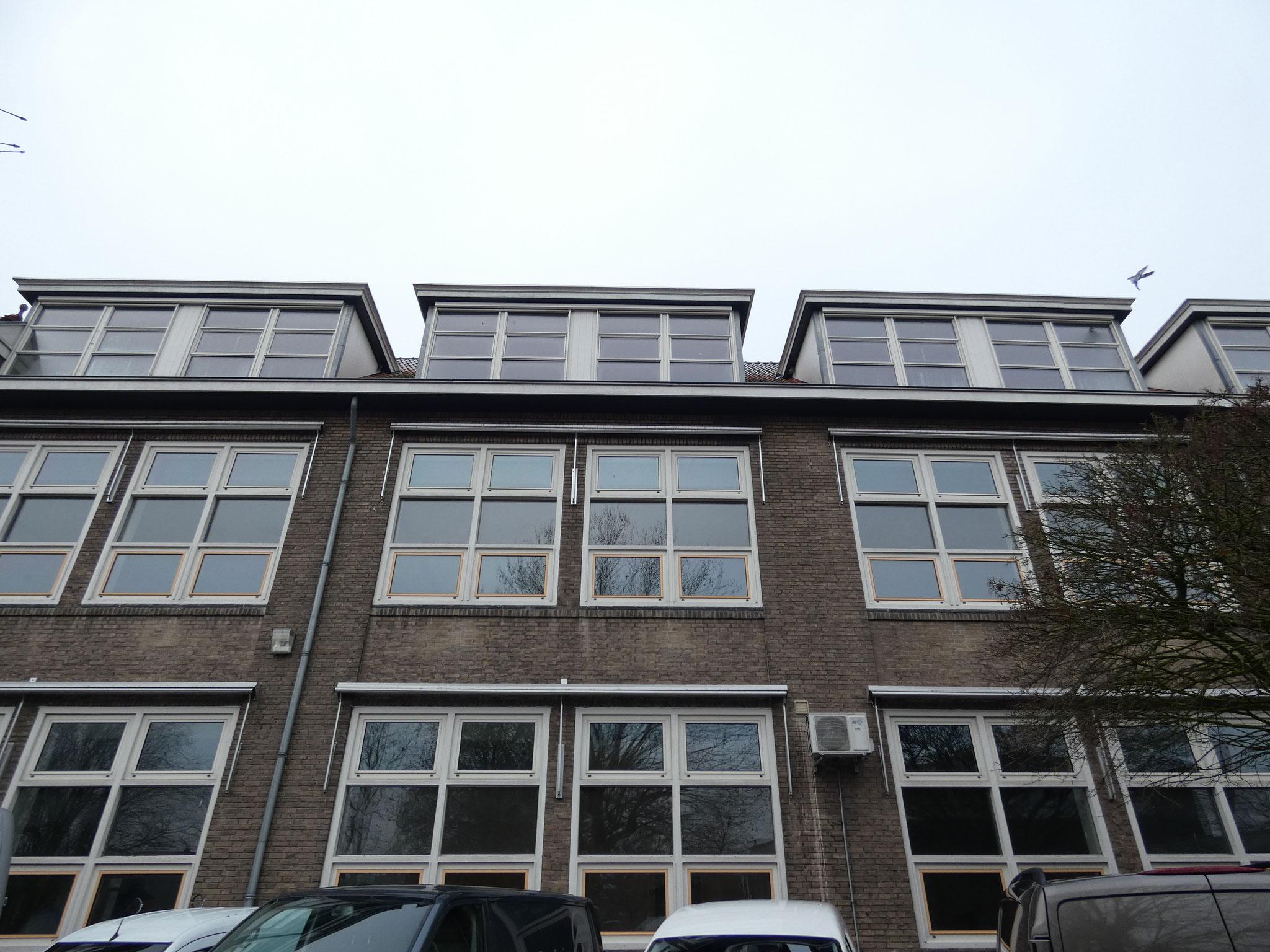 De achtergevel van de Martinusschool, met de karakteristieke grote vensters.