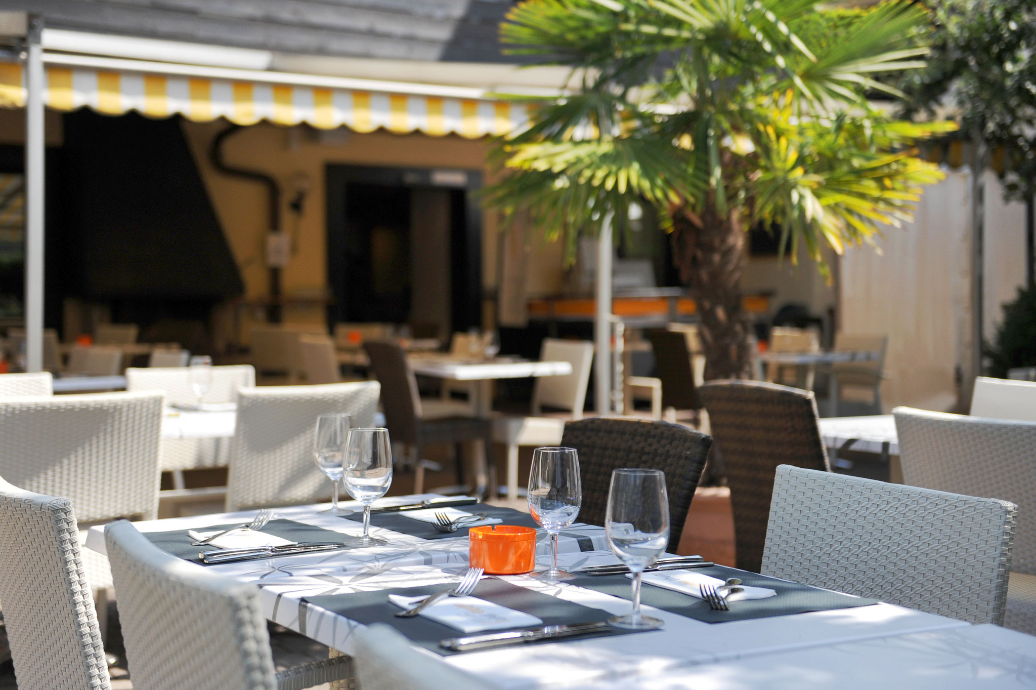 our big terrace