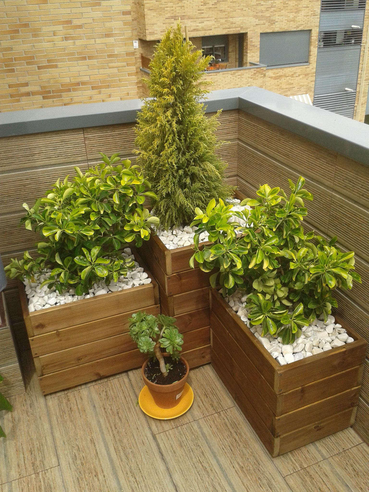 Jardineras al autoclave exterior jardineras de madera - Plantas de exterior baratas ...