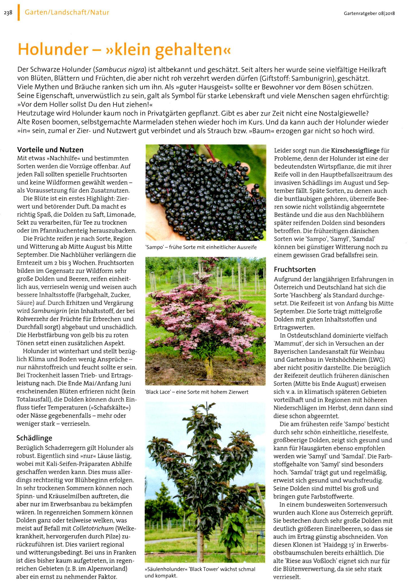 Quelle: Der praktische Gartenratgeber Ausgabe 8|2018 / Herausgeber Bayerischer Landesverband für Gartenbau und Landespflege e.V.