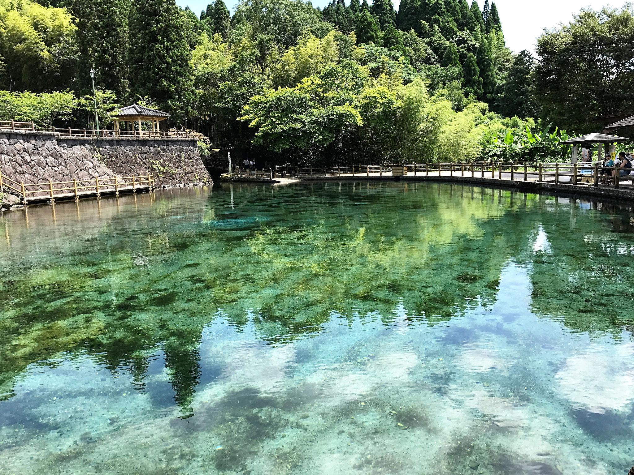 丸池(湧水町)