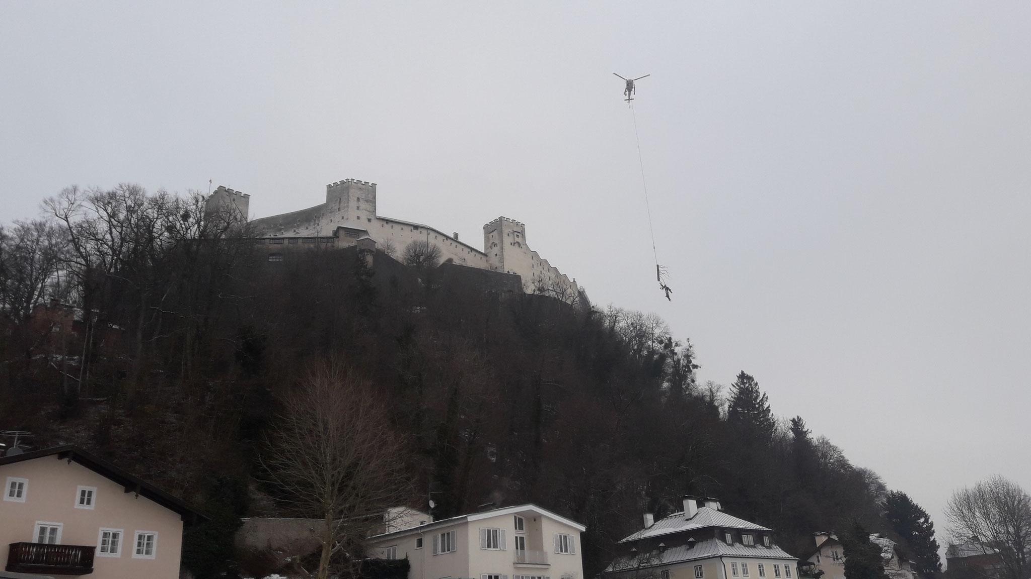 Helikopterfällung Salzburg