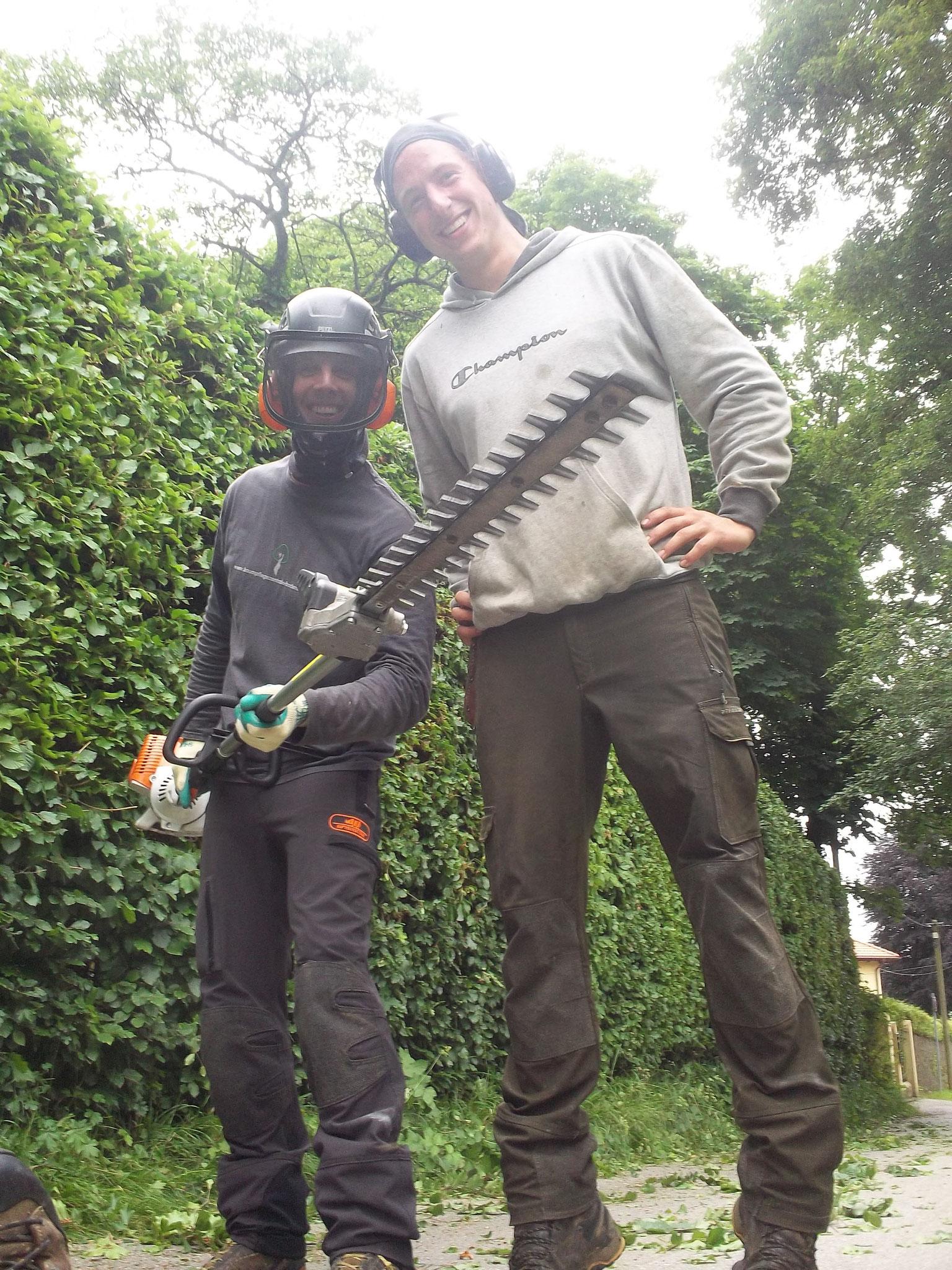 Baumpfleger mit Heckenschere.