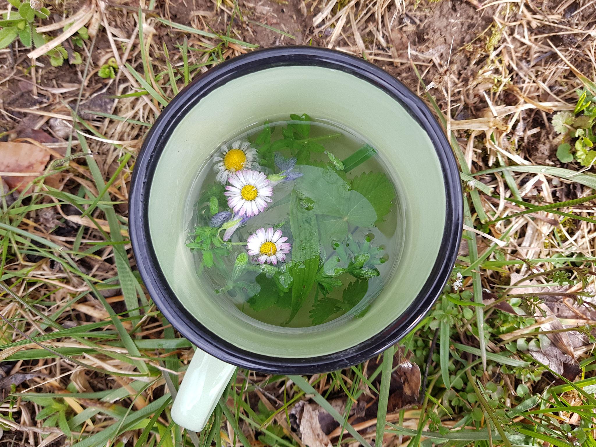 unterwegs - Tee direkt aus der Natur
