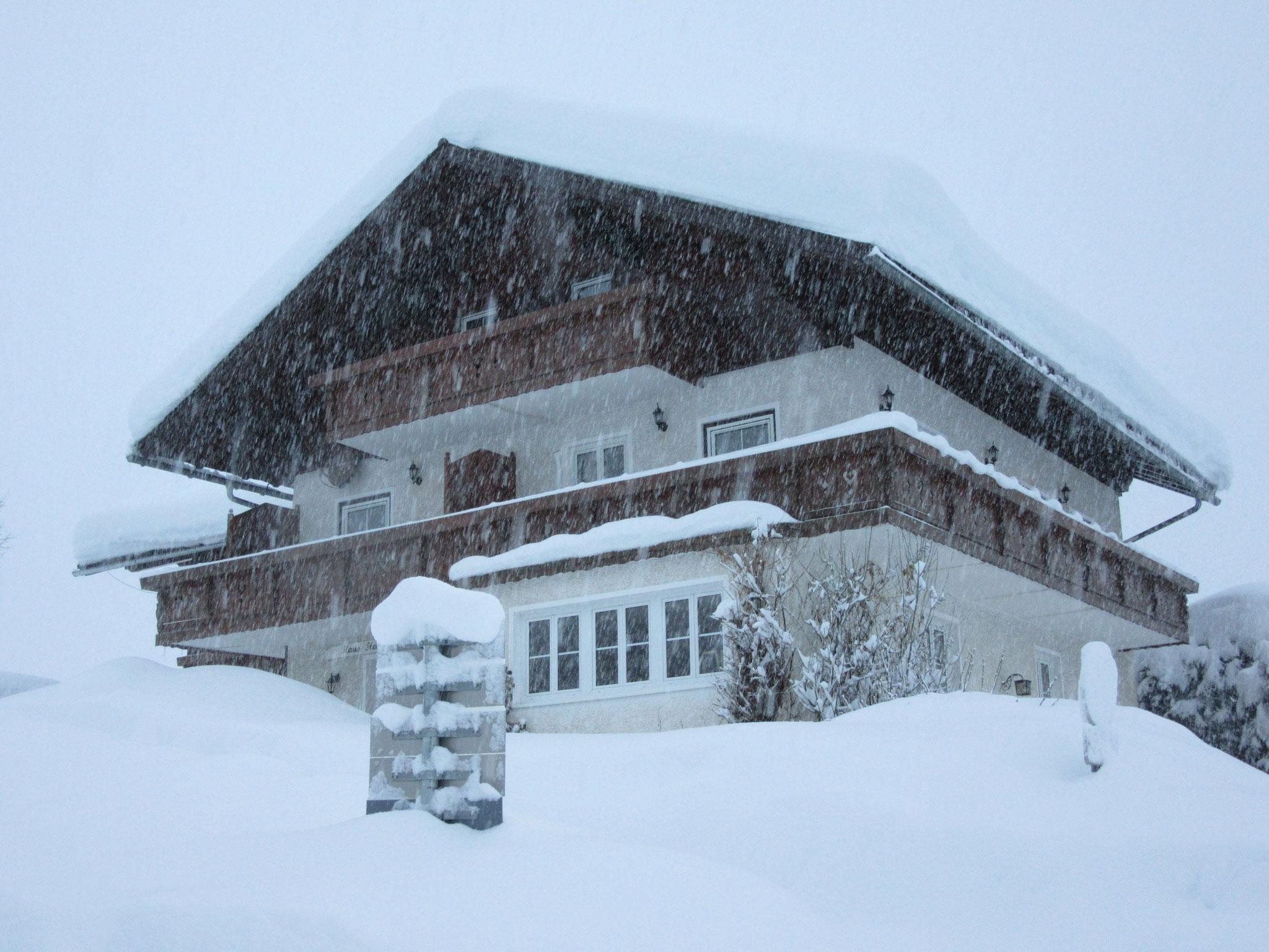 Deep snow, January 2019