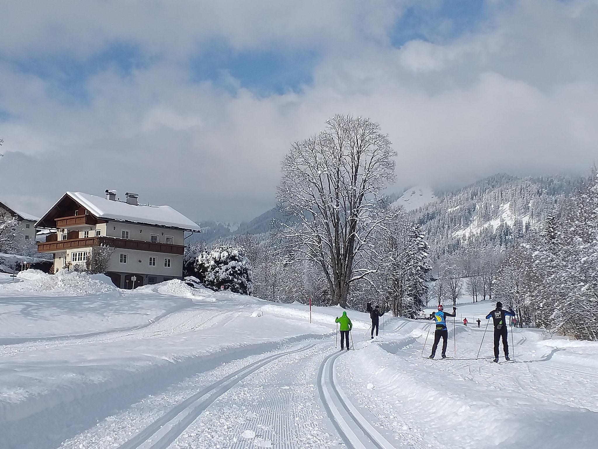 Langlaufloipen und Winterwanderwege neben dem Haus