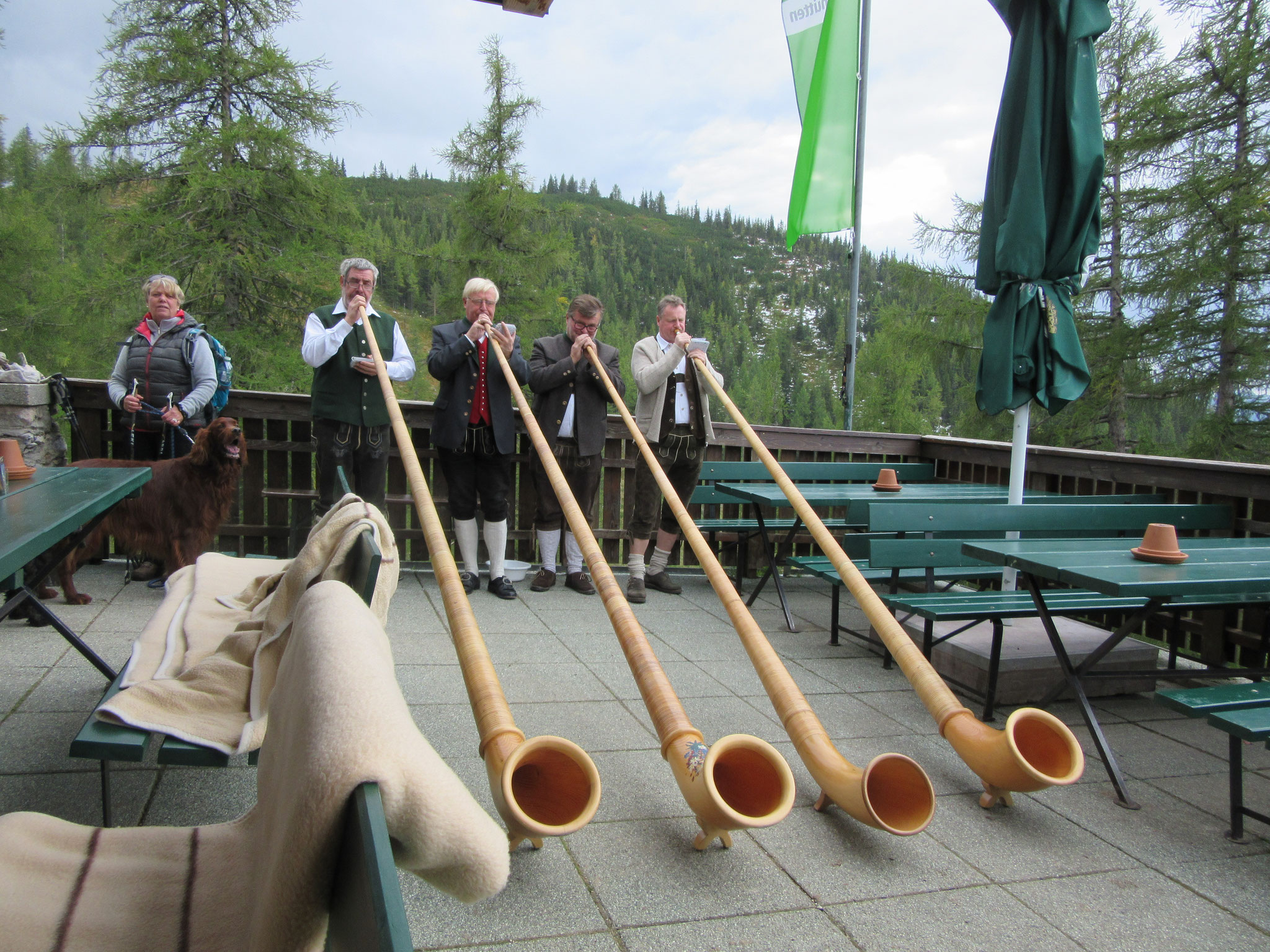 Alpine horns on a music festival day