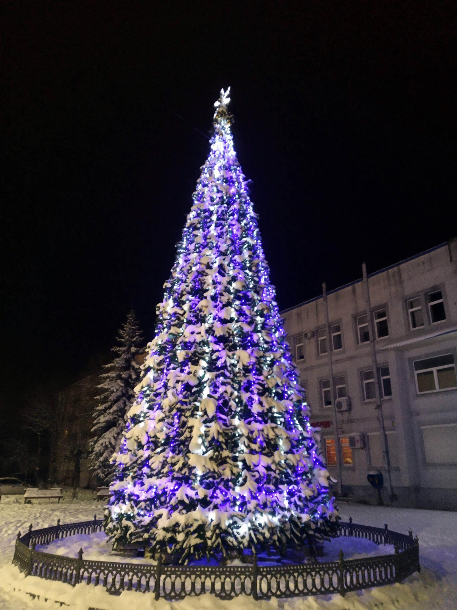 Weihnachtsbaum in Ragnit