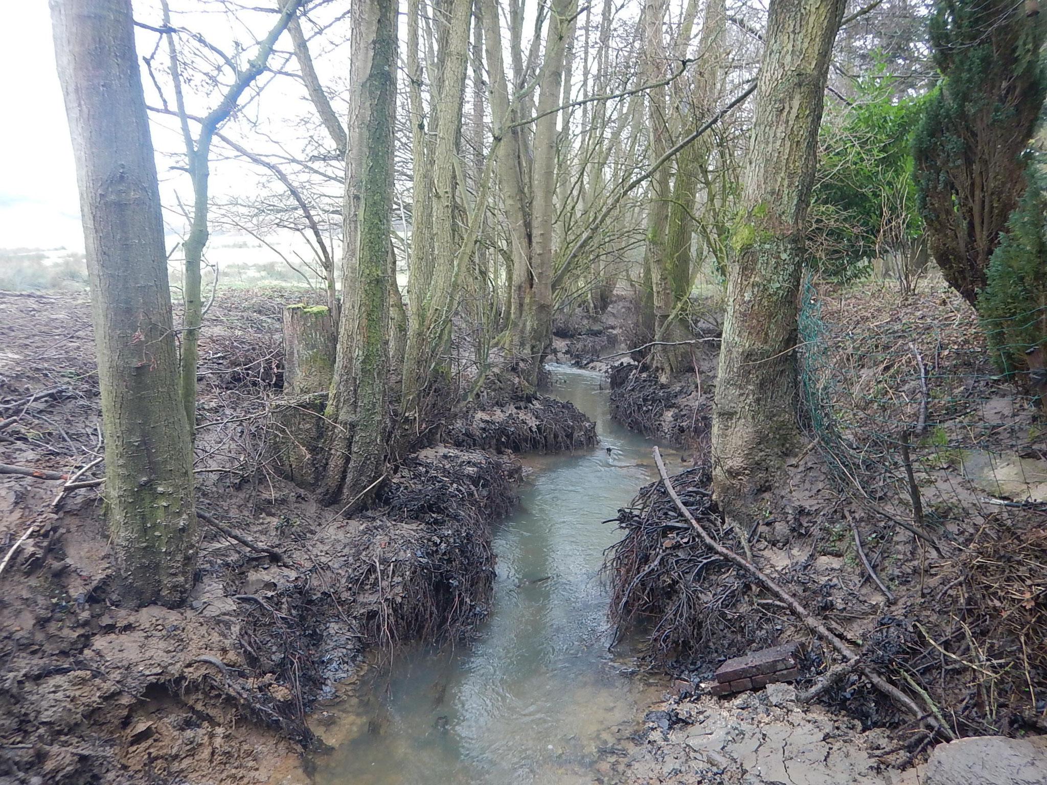 Dénoiement du cours d'eau (90 cm de hauteur) en amont immédiat du pont
